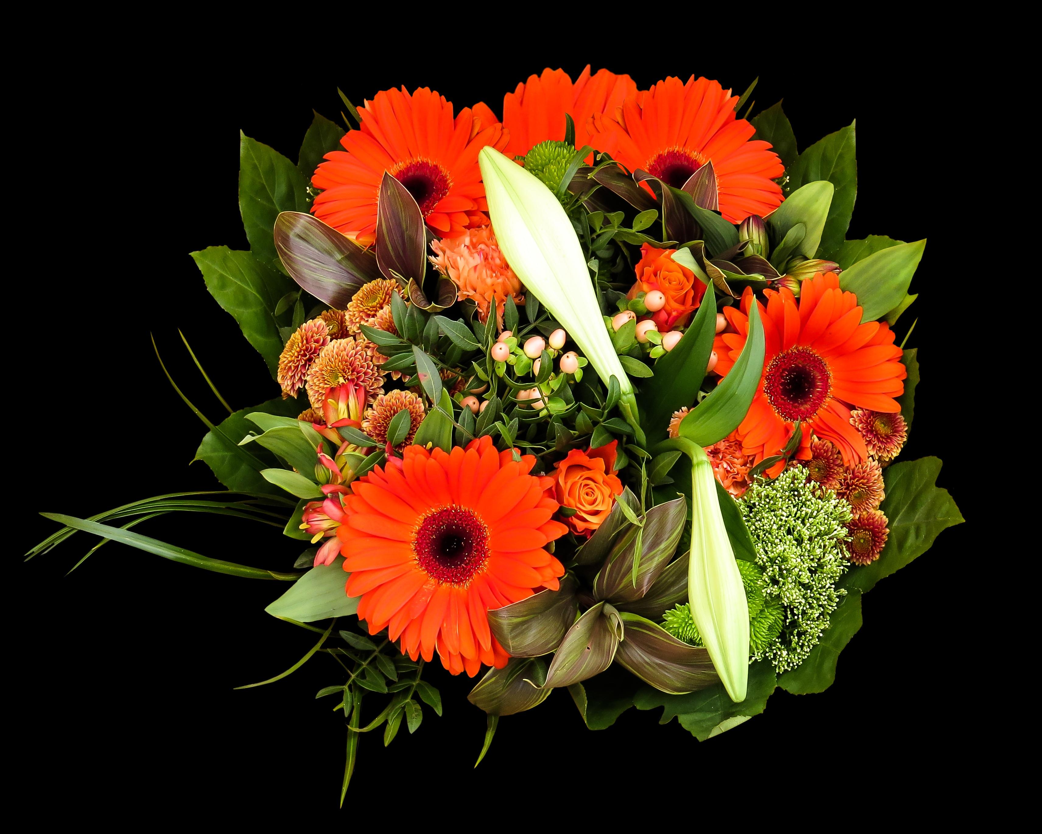 Images gratuites fleur p tale flore gerbera lis for Bouquet de fleurs 974
