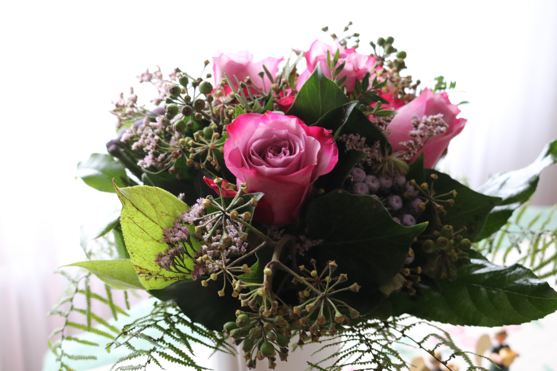 Gambar Menanam Daun Bunga Hadiah Warna Berwarna Merah Muda