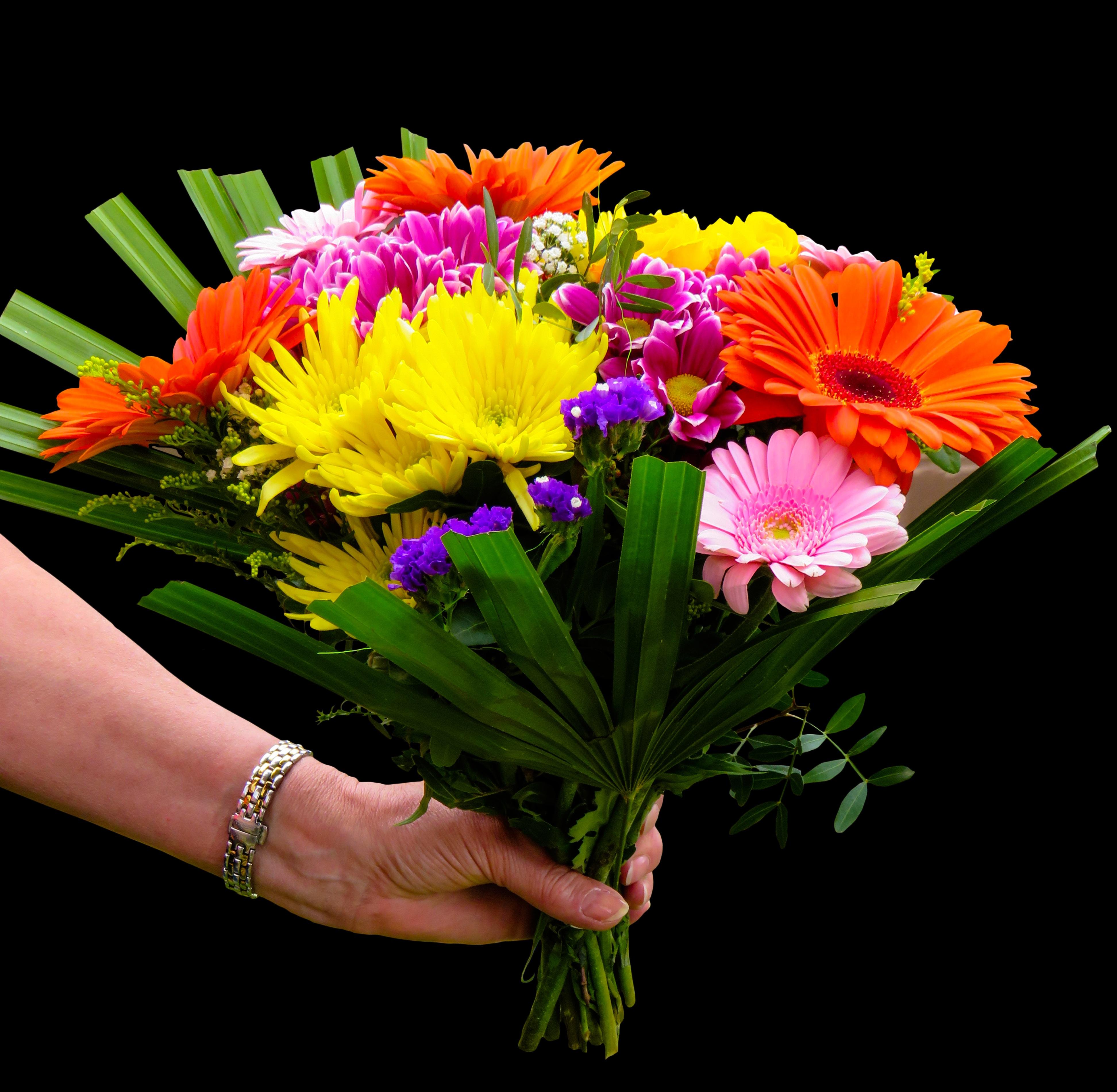 Images gratuites fleur p tale cadeau rose couleur for Bouquet de fleurs 974