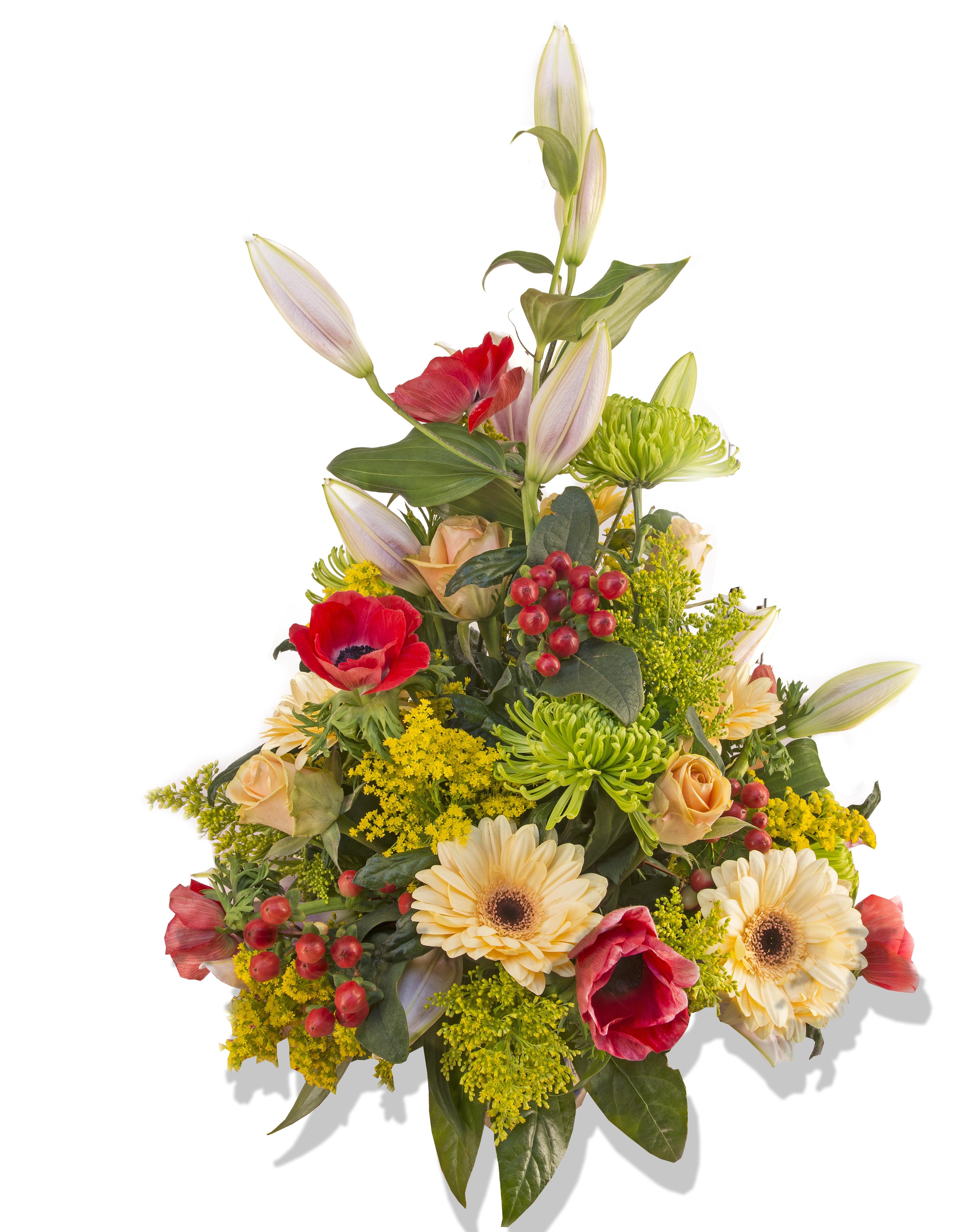 Free Images : petal, plants, art, gerbera, floristry, retail ...