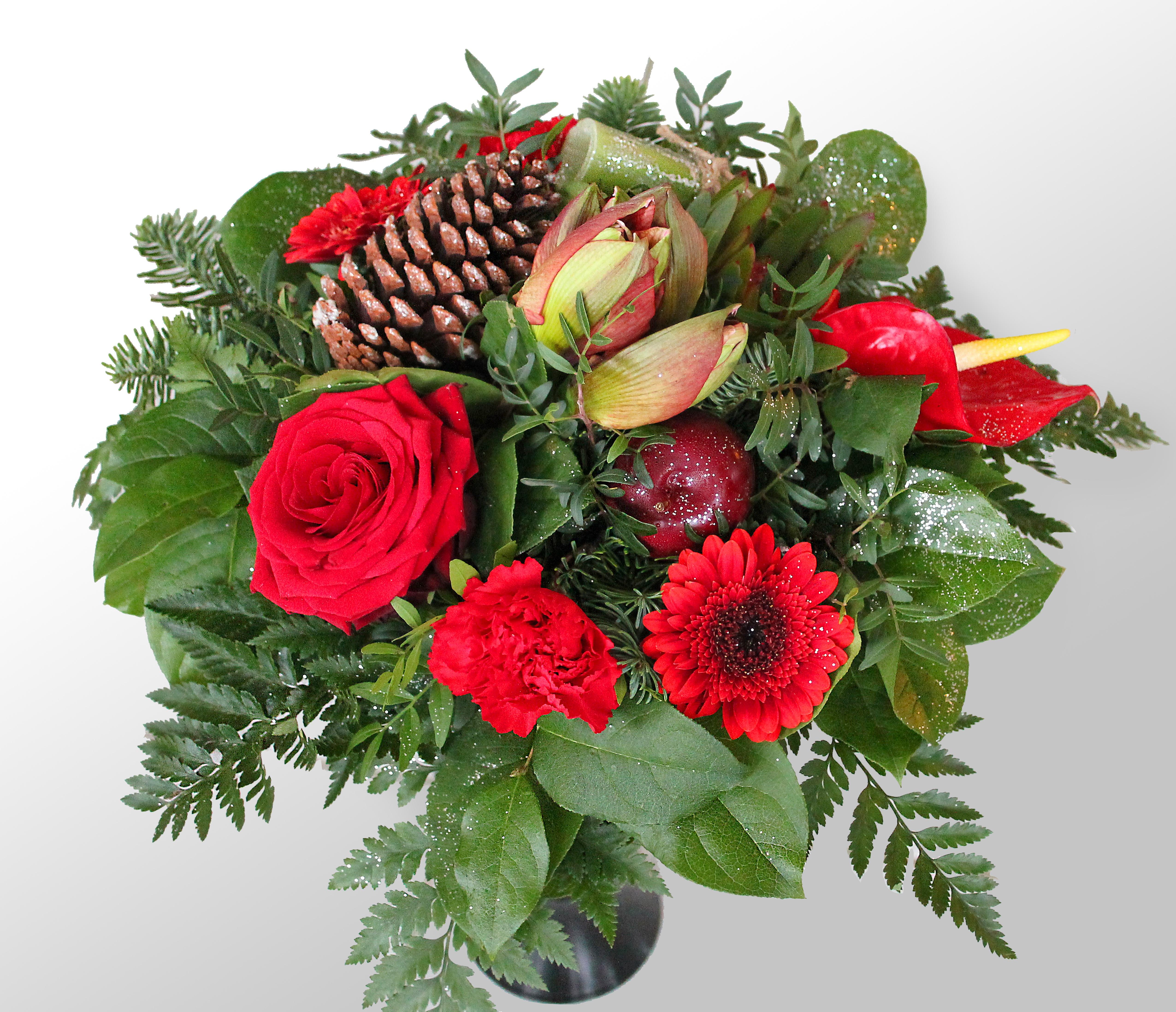 Free Images Petal Vase Red Rose Red Flower Background Spruce