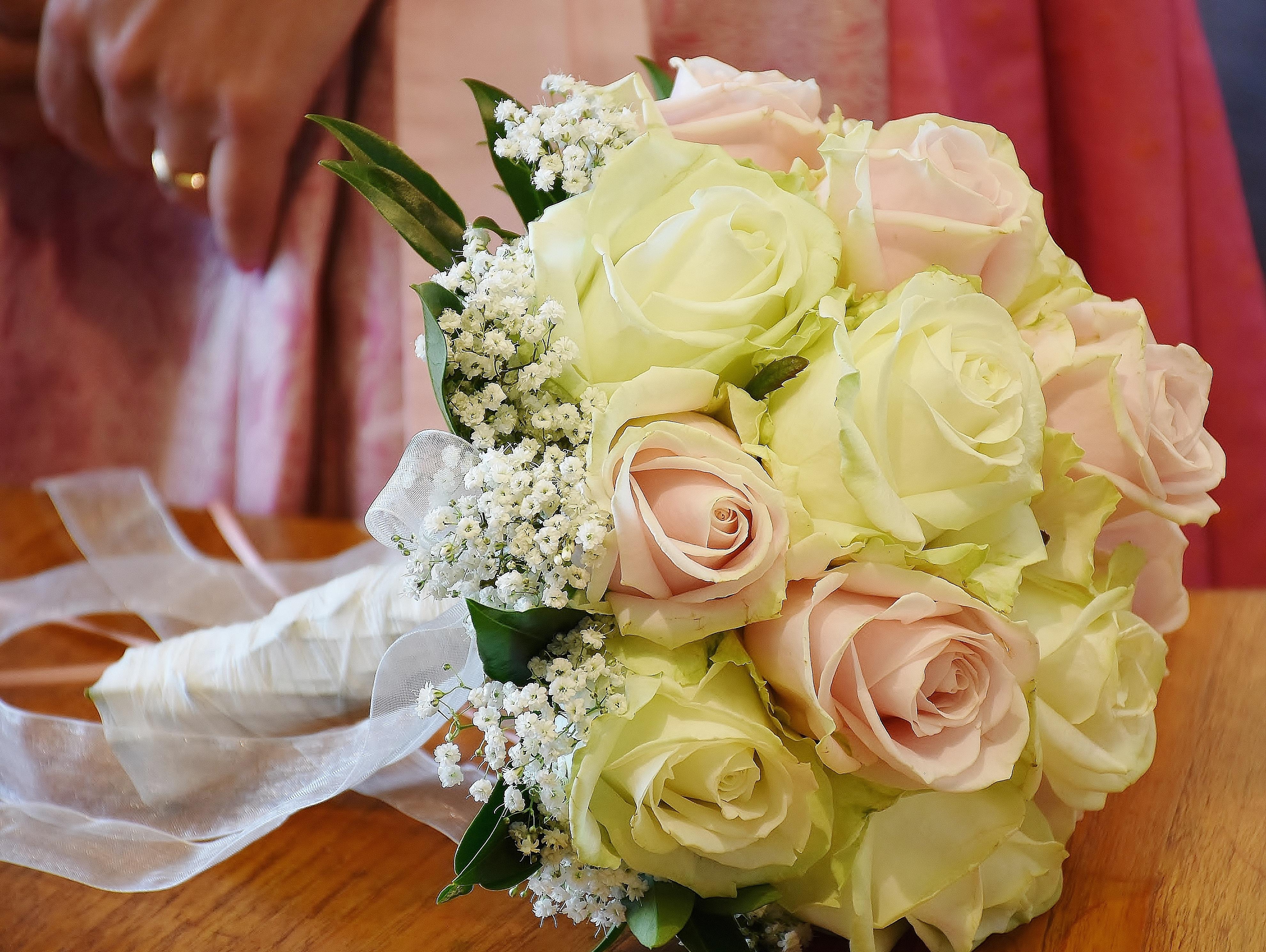 Free Images : petal, celebration, love, symbol, romance, romantic ...