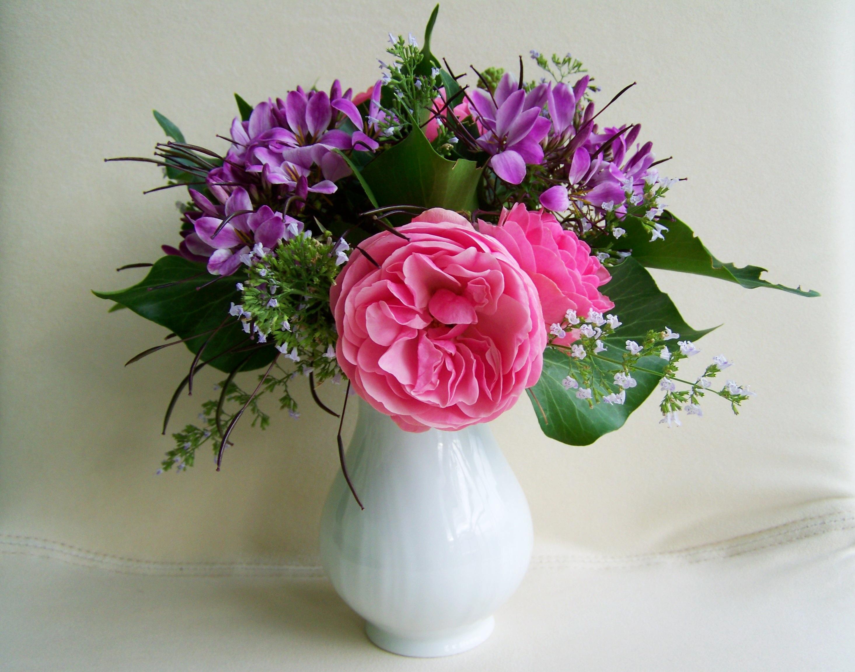 Free Images Petal Color Pink Art Cut Flower Floristry Bunch