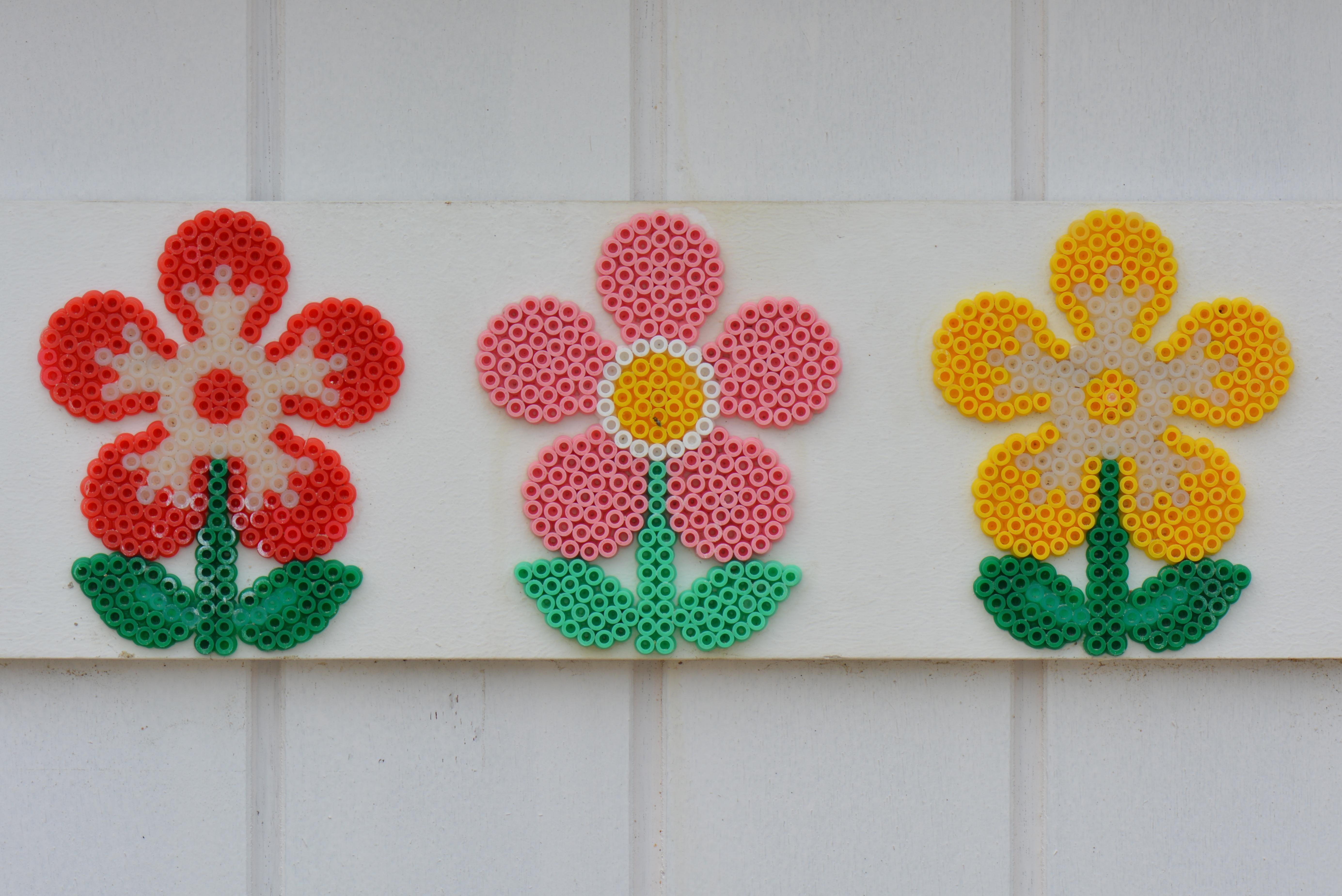 Kostenlose foto : Pflanze, Blume, Blütenblatt, Dekoration, Muster ...