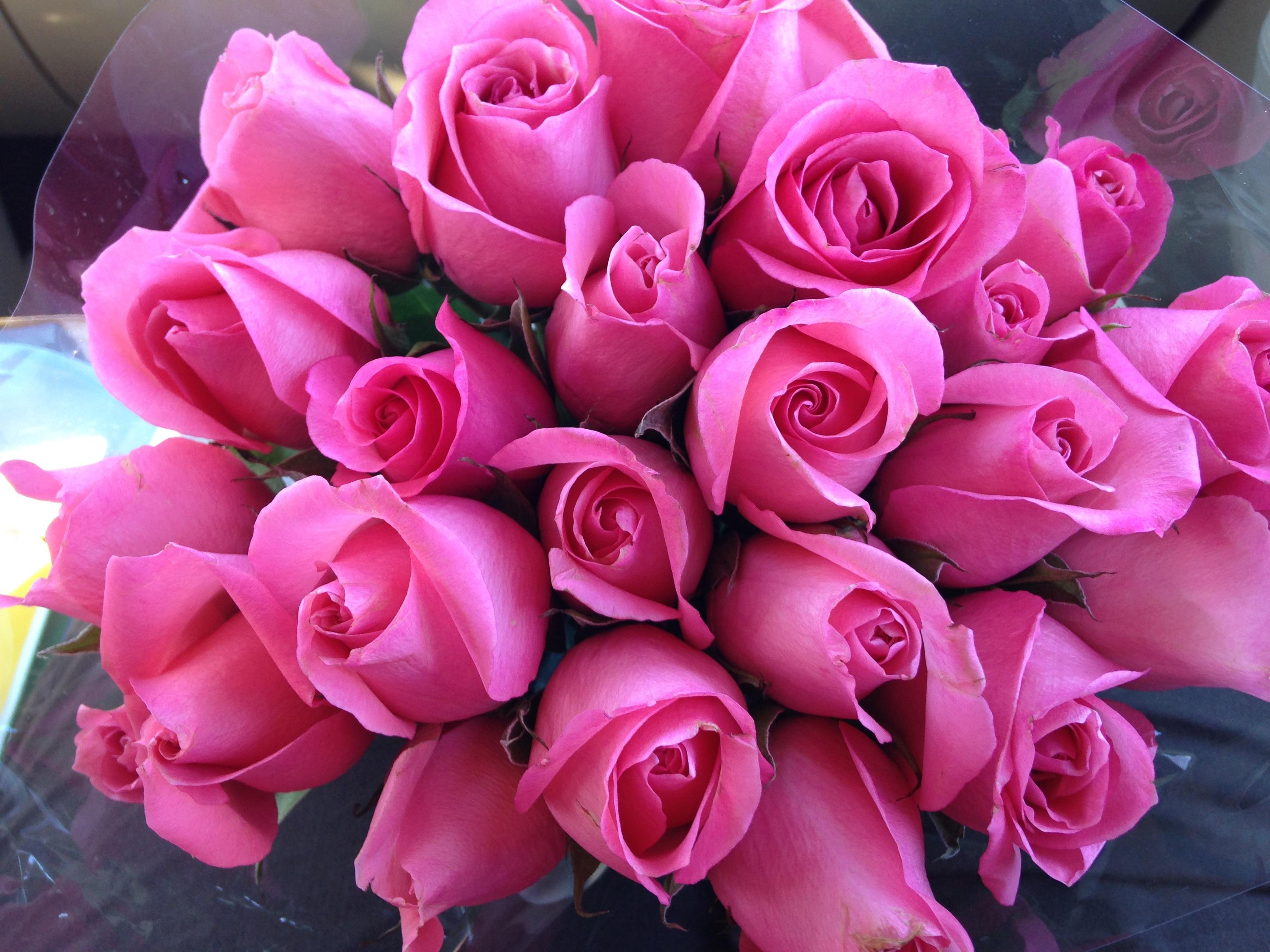 Цветы букет розовые розы
