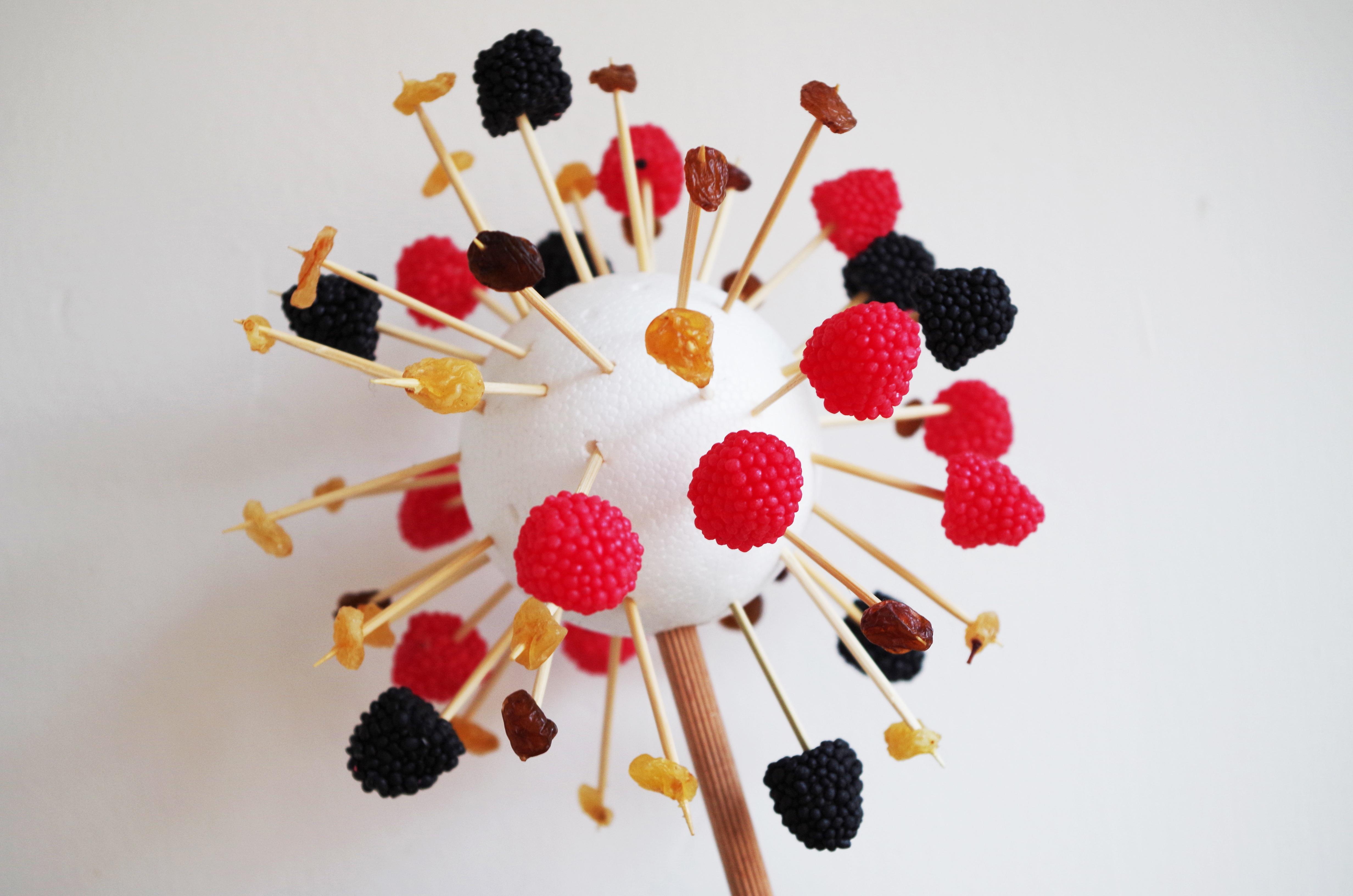 Free Images : plant, petal, food, red, produce, color, art, garnish ...