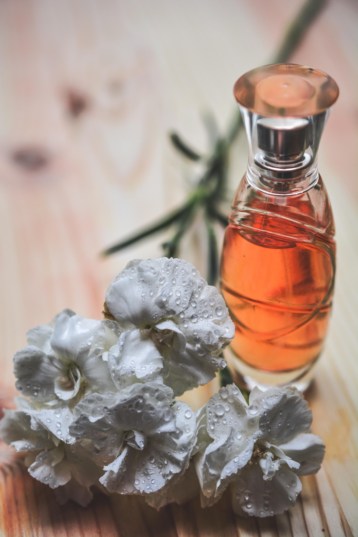 силу леммы картинки запахи цветов такая
