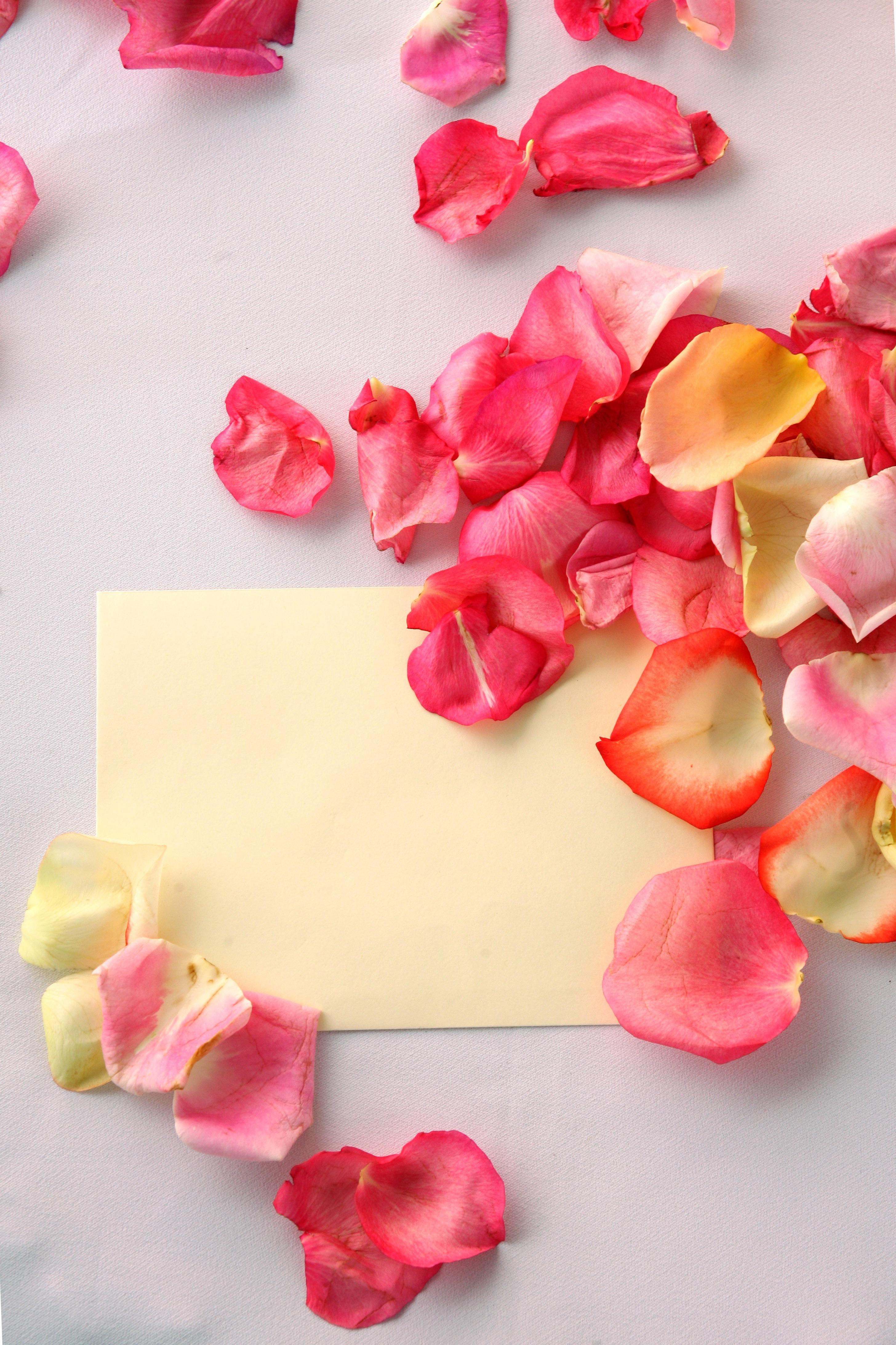 Годовщиной знакомства, картинки из лепестков роз