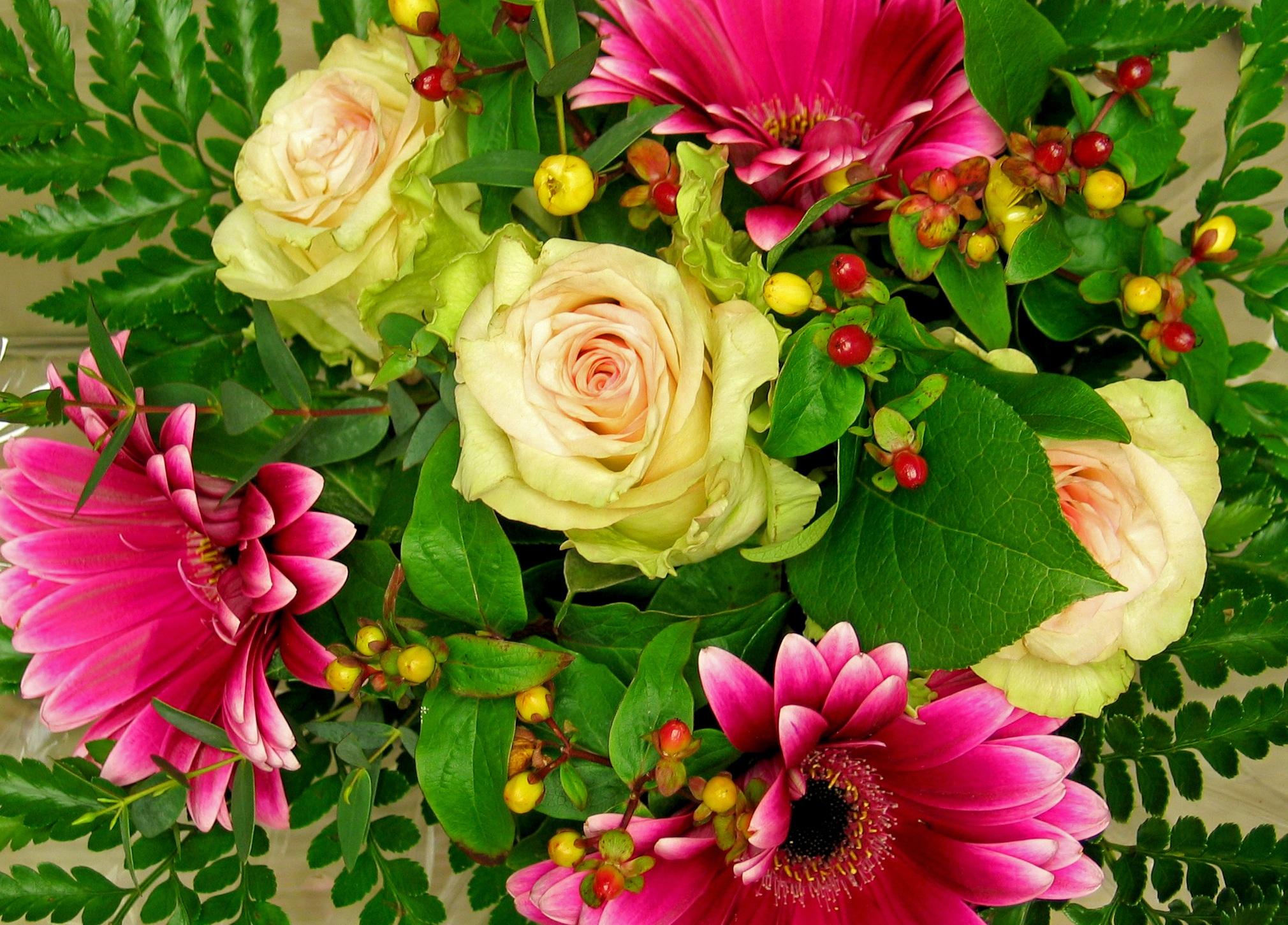 что основные картинки красивейших букетов цветов впервые показали