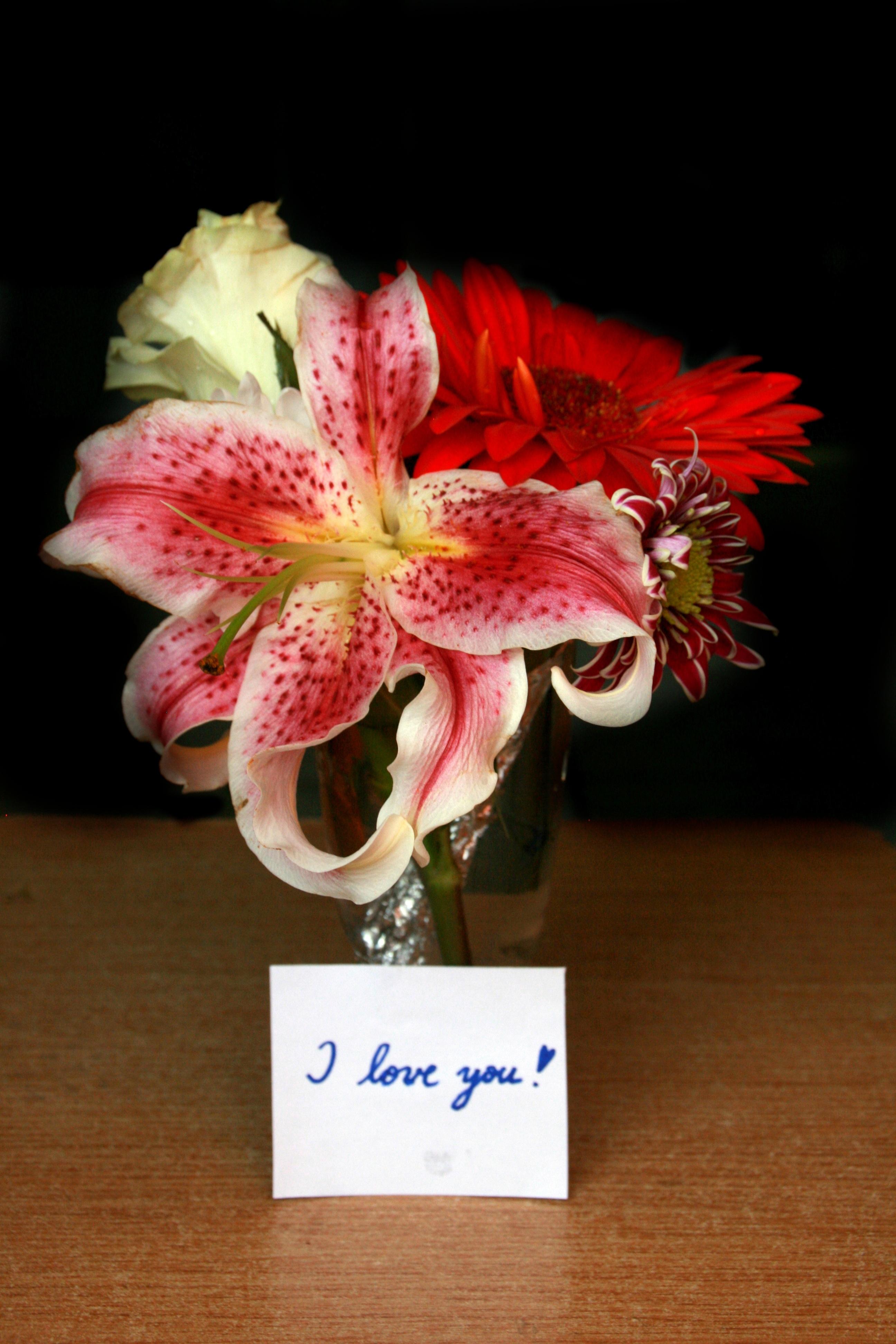 Цветов букет одного цветка амариллиса доставка цветов