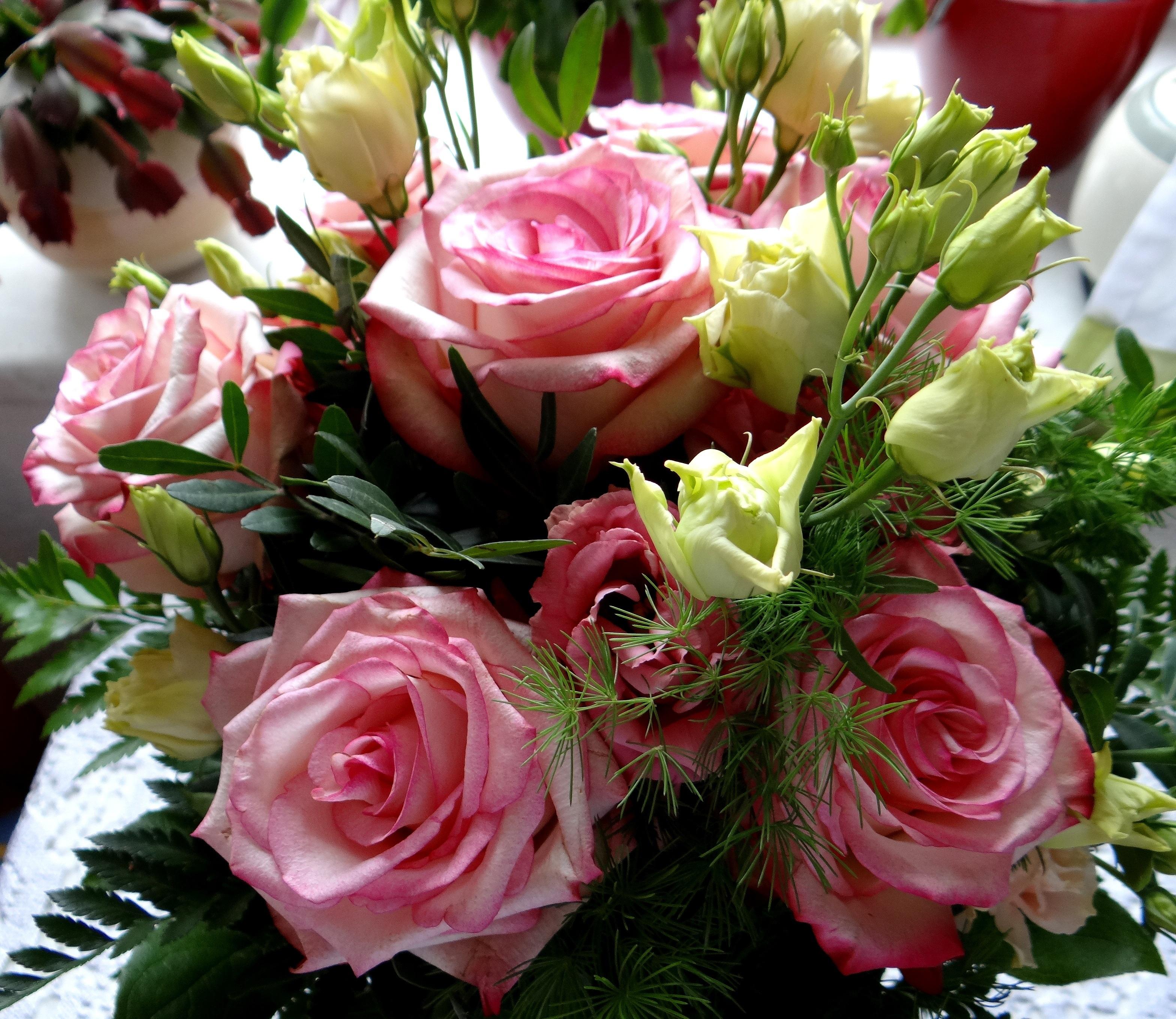 Garden Roses Flower Petal: Free Images : Petal, Love, Pink, Birthday, Bouquet Of