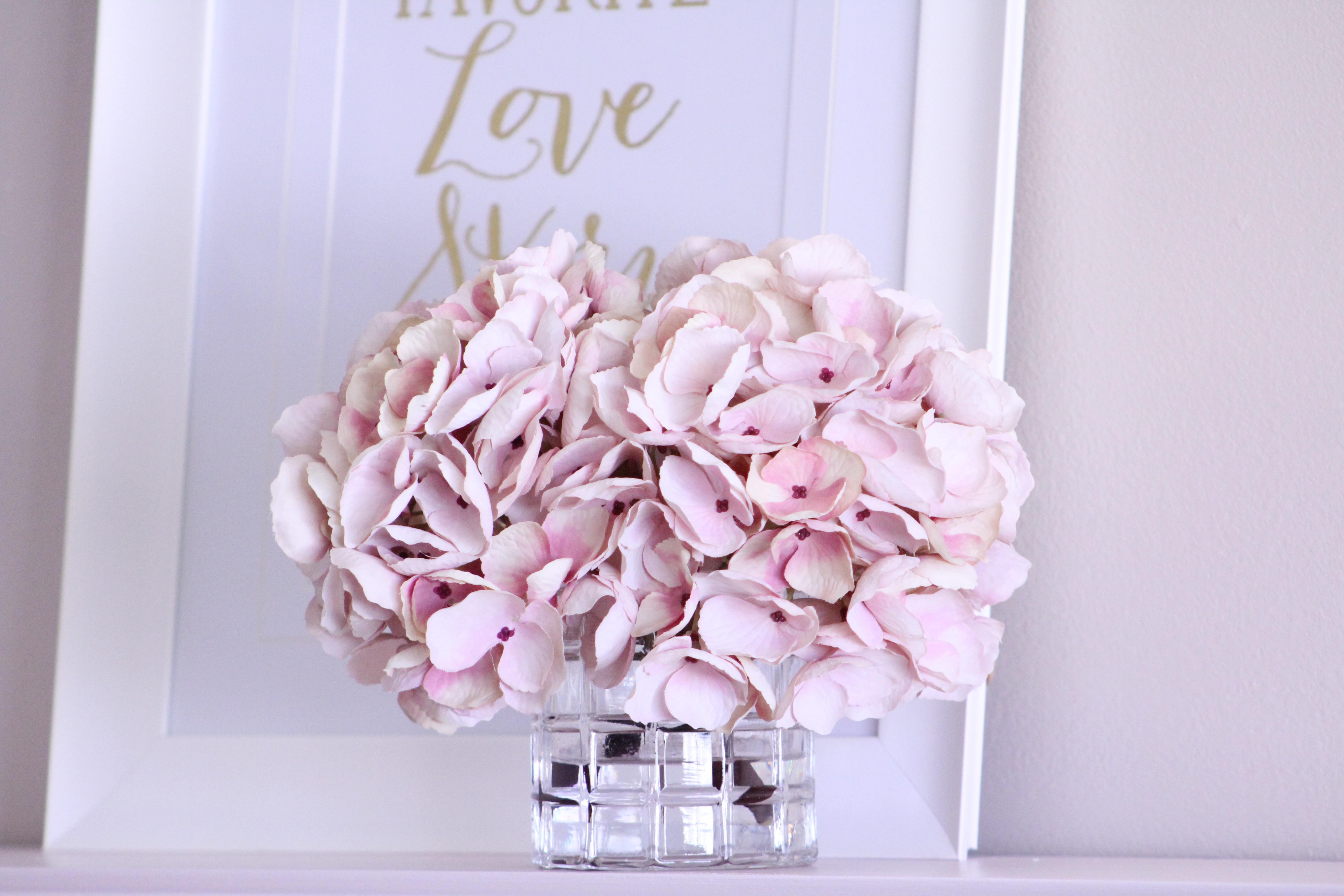 images gratuites p tale rose hortensia fleuriste. Black Bedroom Furniture Sets. Home Design Ideas