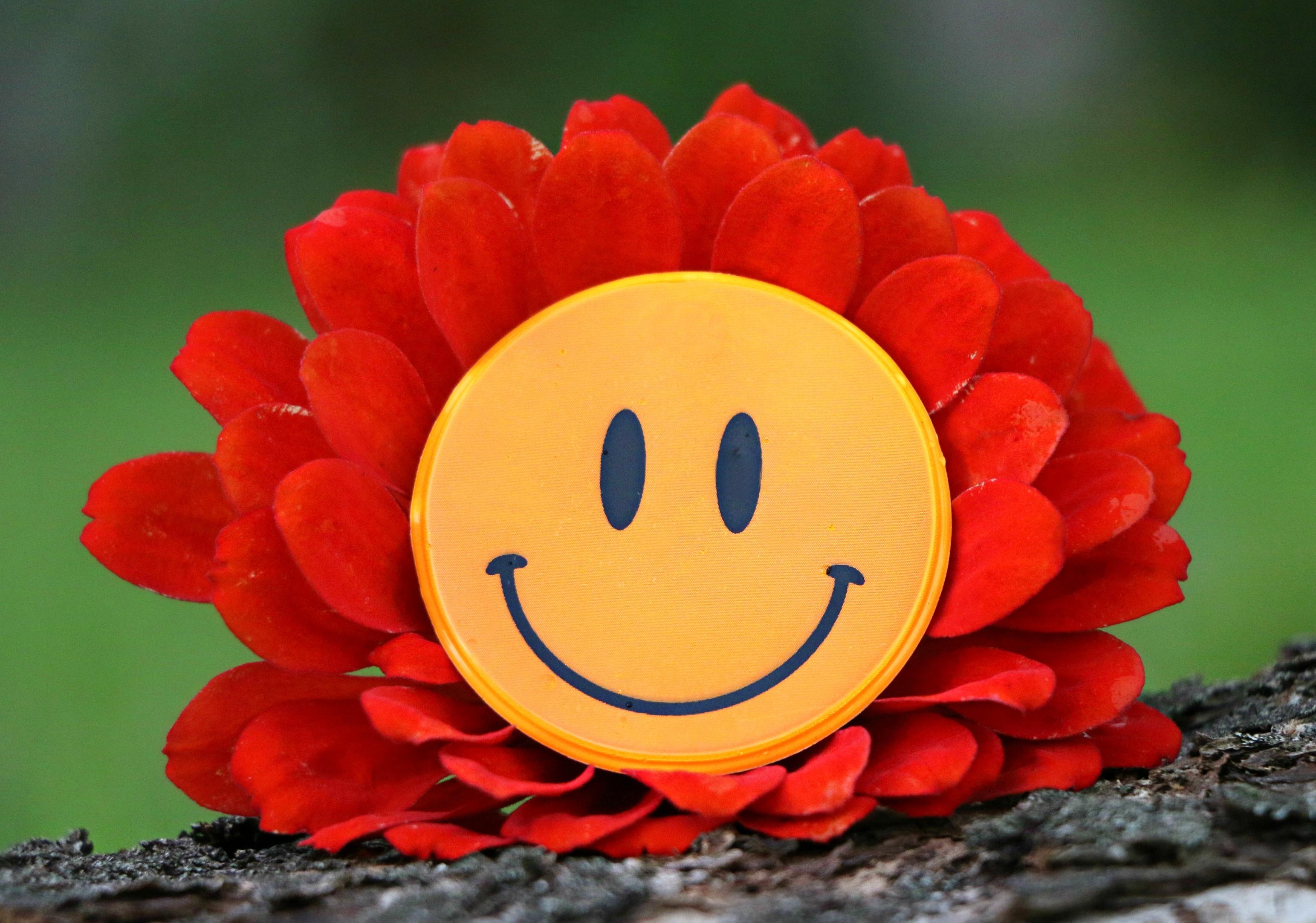 картинка цветов улыбок для кондитера