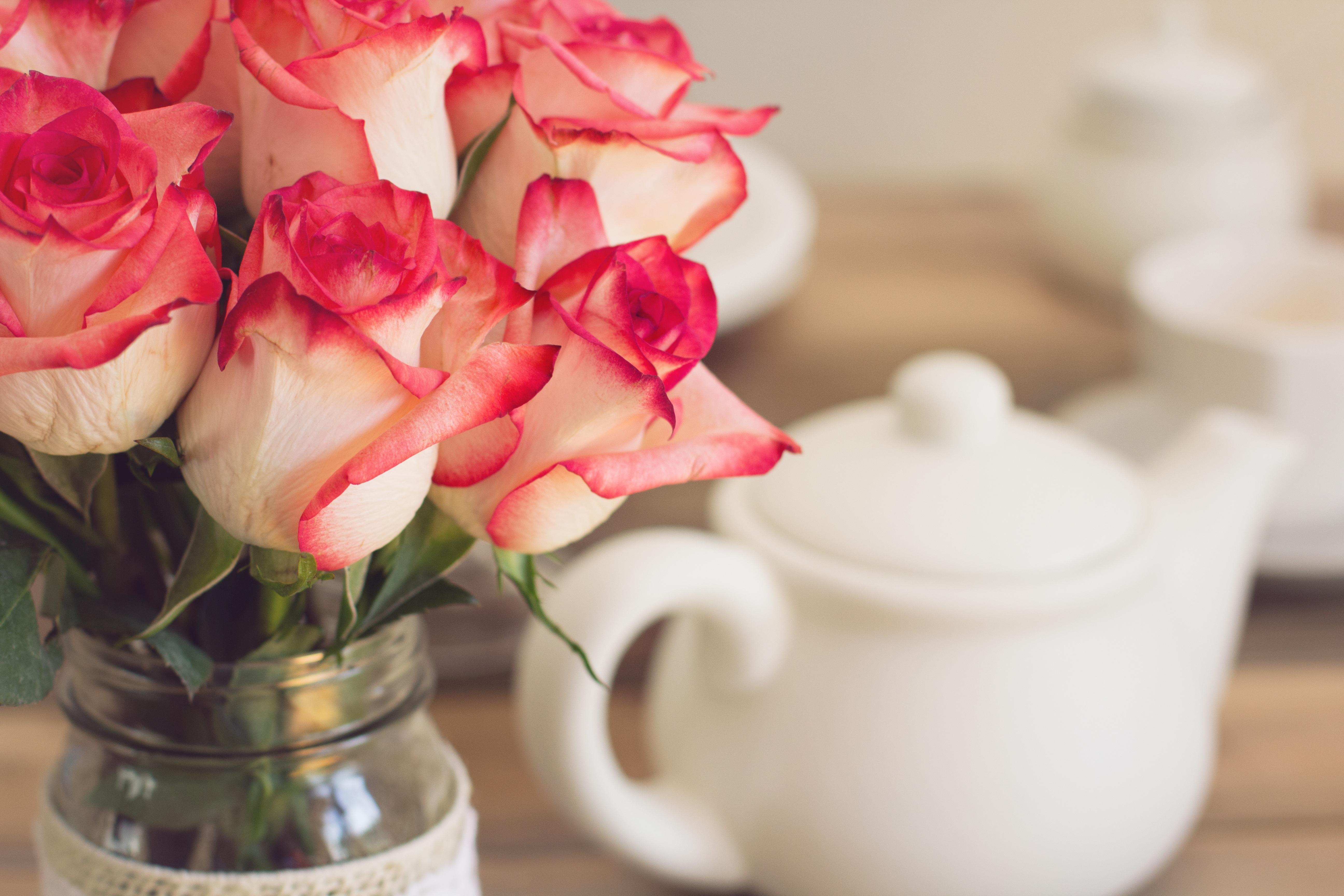 Free images petal teapot pink roses floristry flowering plant plant flower petal teapot bouquet pink roses floristry flowering plant shabby chic flower bouquet tea party izmirmasajfo