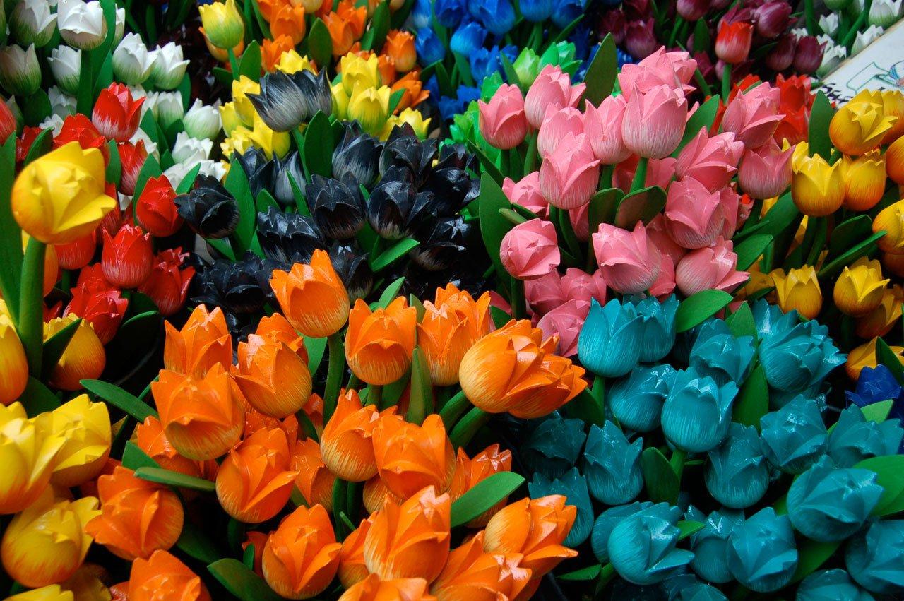 том, фото всех видов цветков биографии