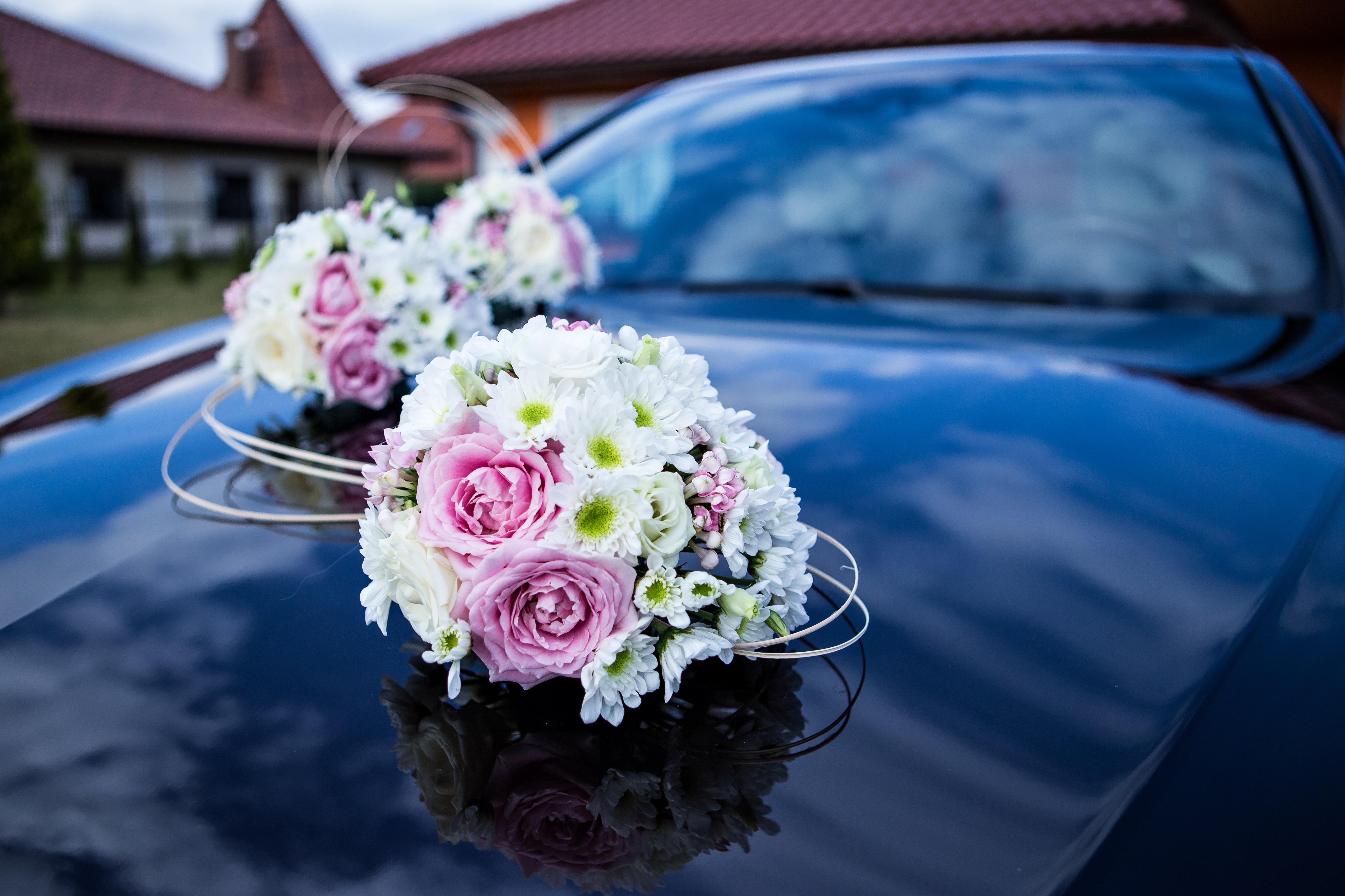 Kostenlose Foto Pflanze Blume Blutenblatt Zeremonie Floristik