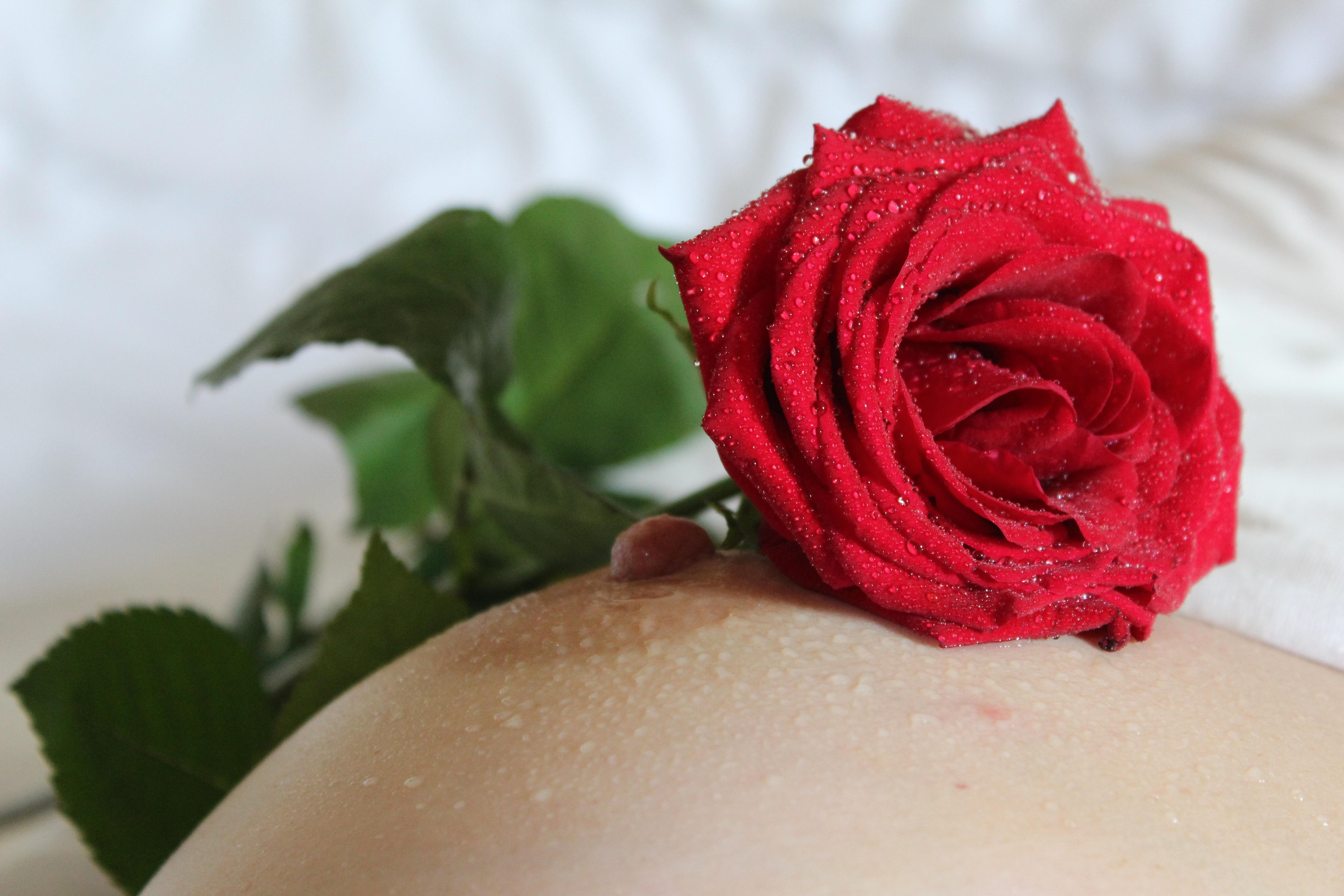 Секс с роза