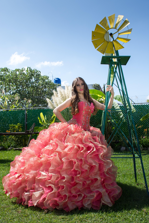 Fotos Gratis Planta Flor Rosado Flora Vestir Fiesta