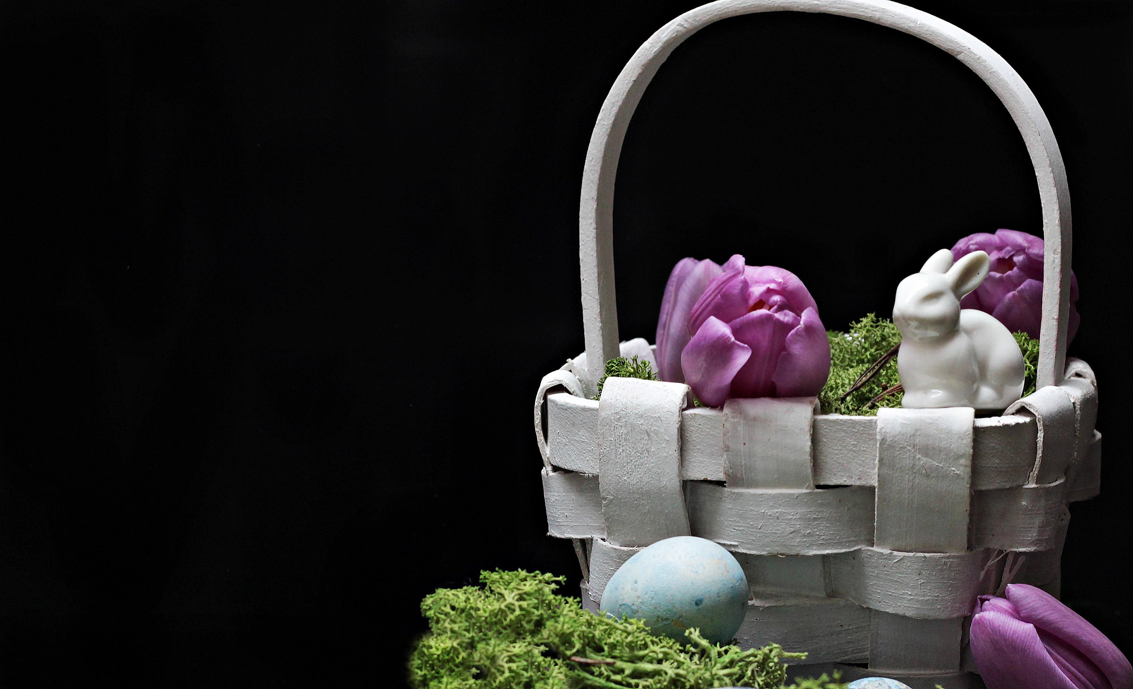 Free Images Plant Petal Moss Green Ceramic Basket Pink Map