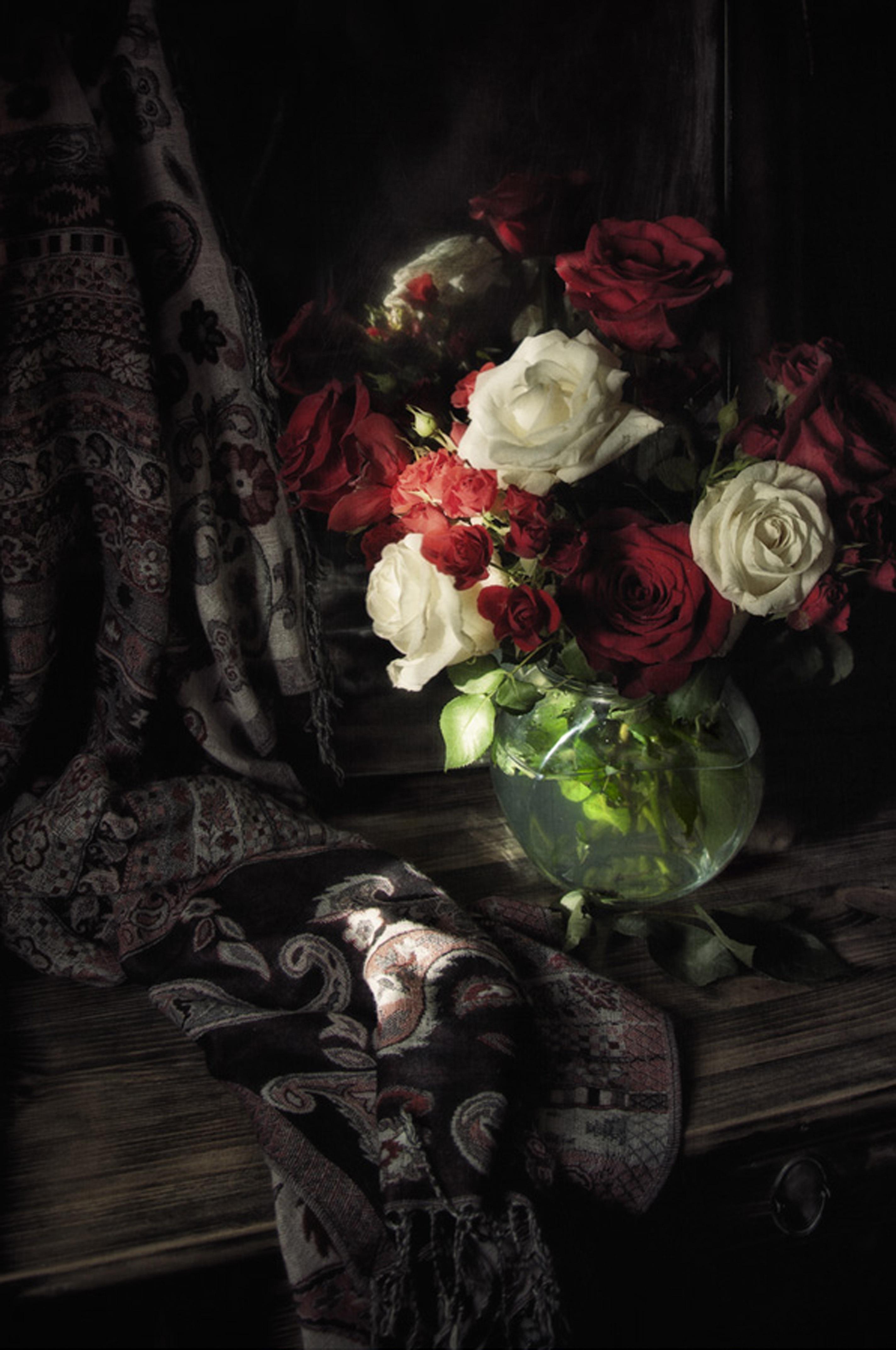 Fotoğraf Bitki çiçek Kırmızı Karanlık Boyama çiçekler Gül