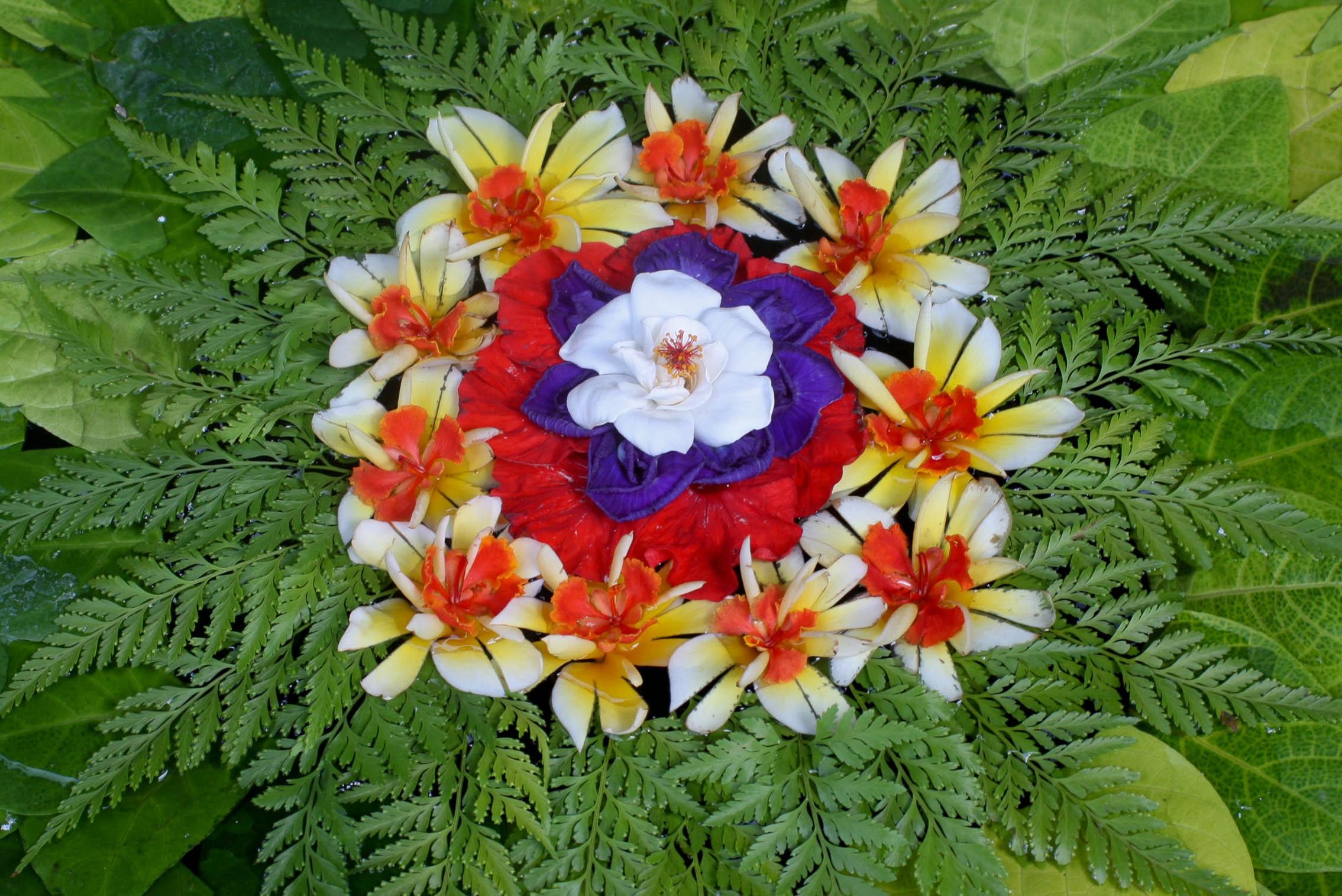 Free Images : religion, botany, flora, flower arrangement ...