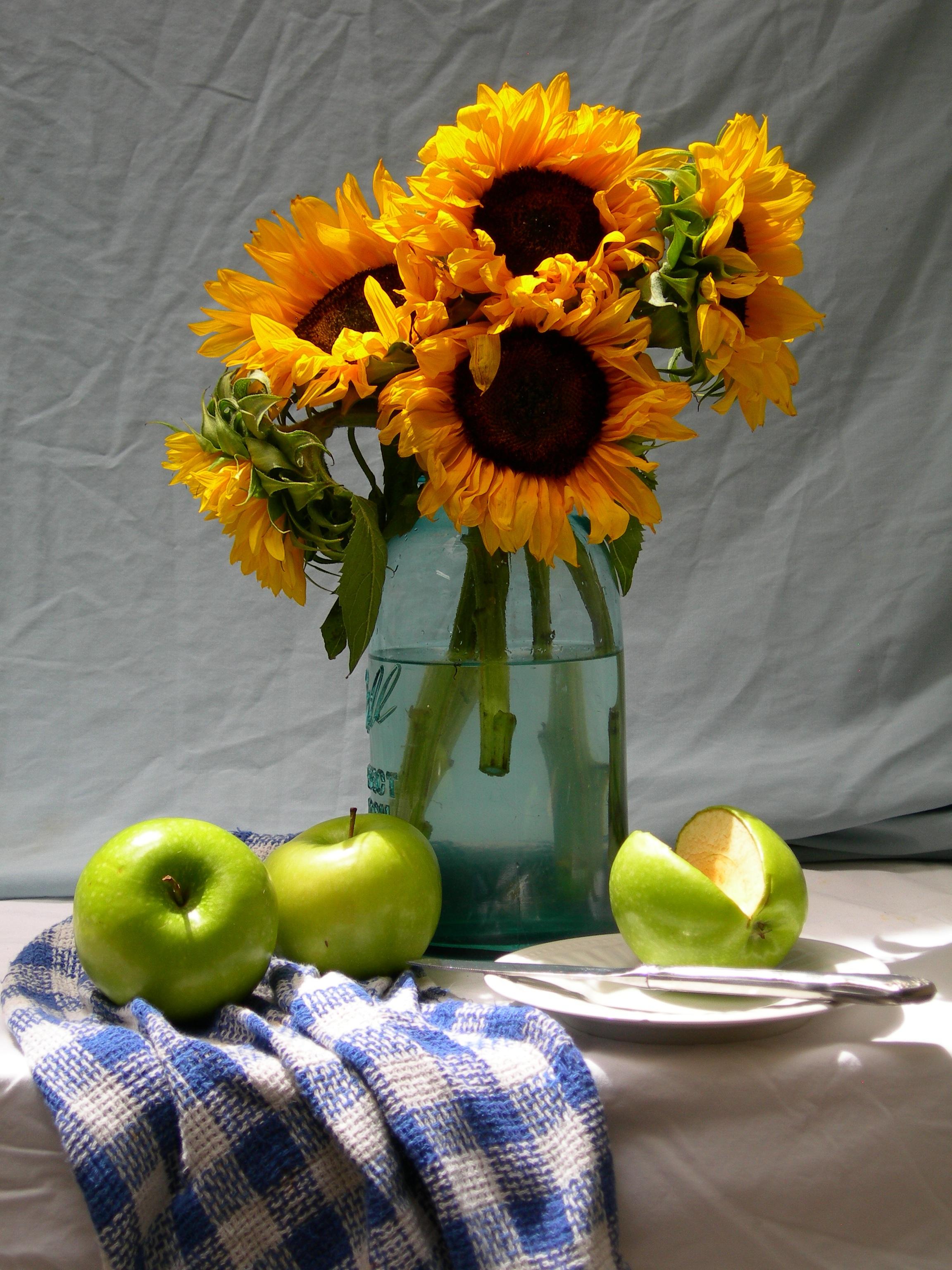 Fotoğraf çiçek Yaz Buket Yeşil üretmek Doğal Sarı Bitki