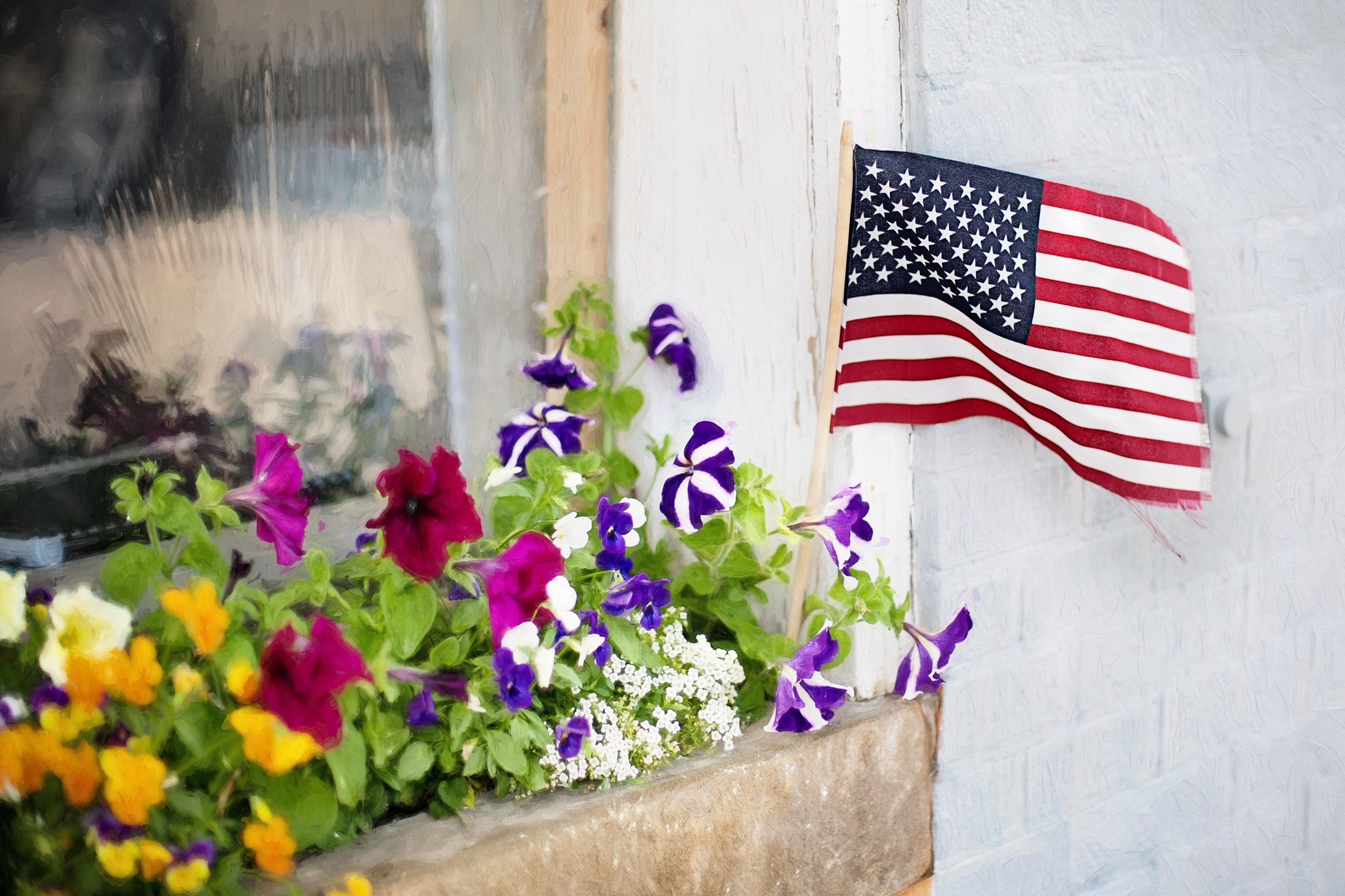 Картинки американские цветы