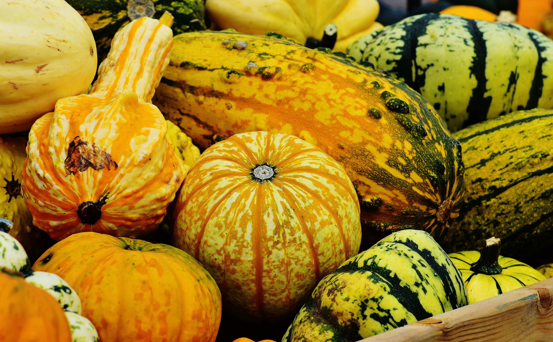 free images fruit orange food harvest produce vegetable