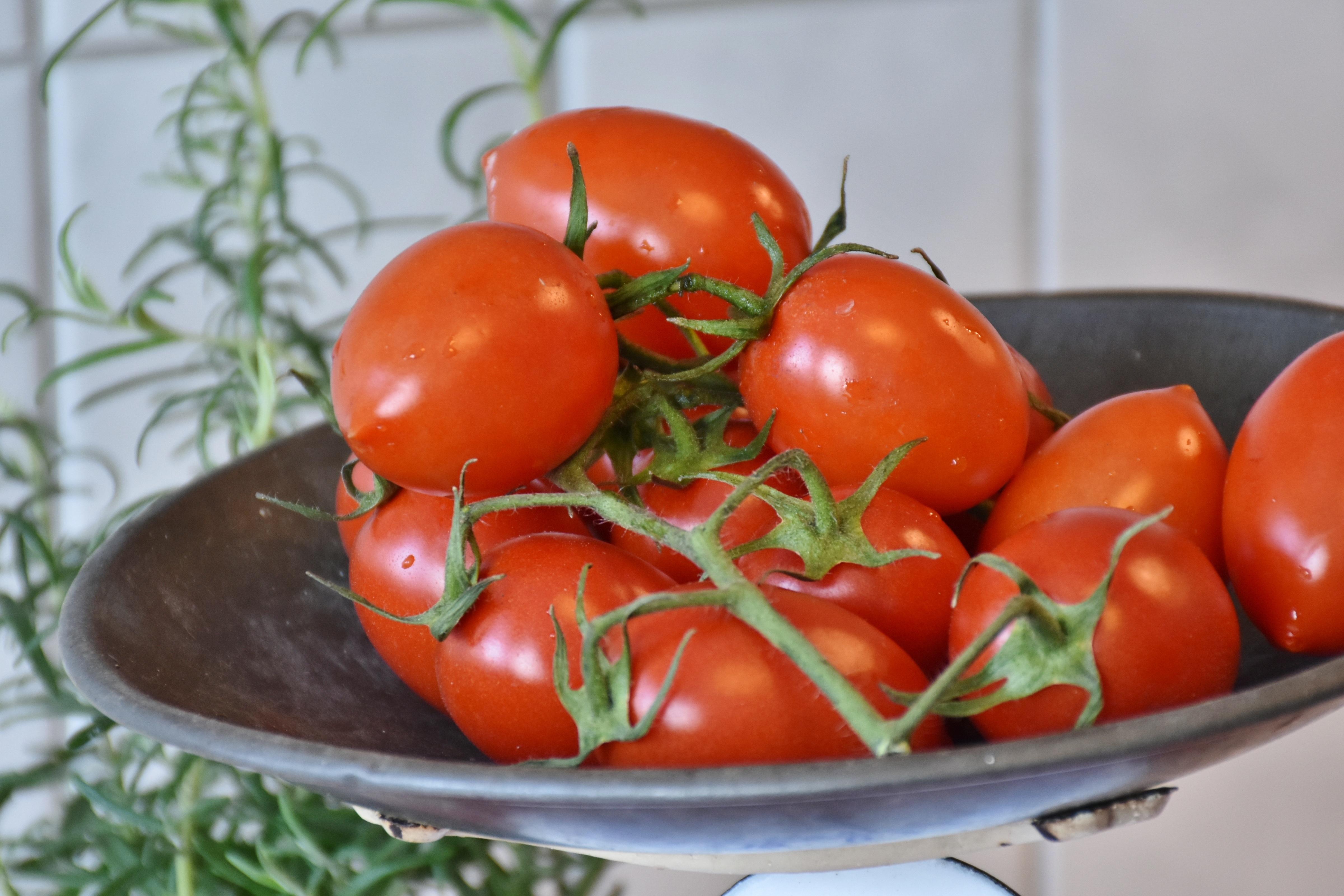 Gambar Menanam Buah Makan Hidangan Makanan Salad Merah Menghasilkan Sayur Mayur Dapur Menimbang Sehat Kalori Sayuran Lezat Vegetarian