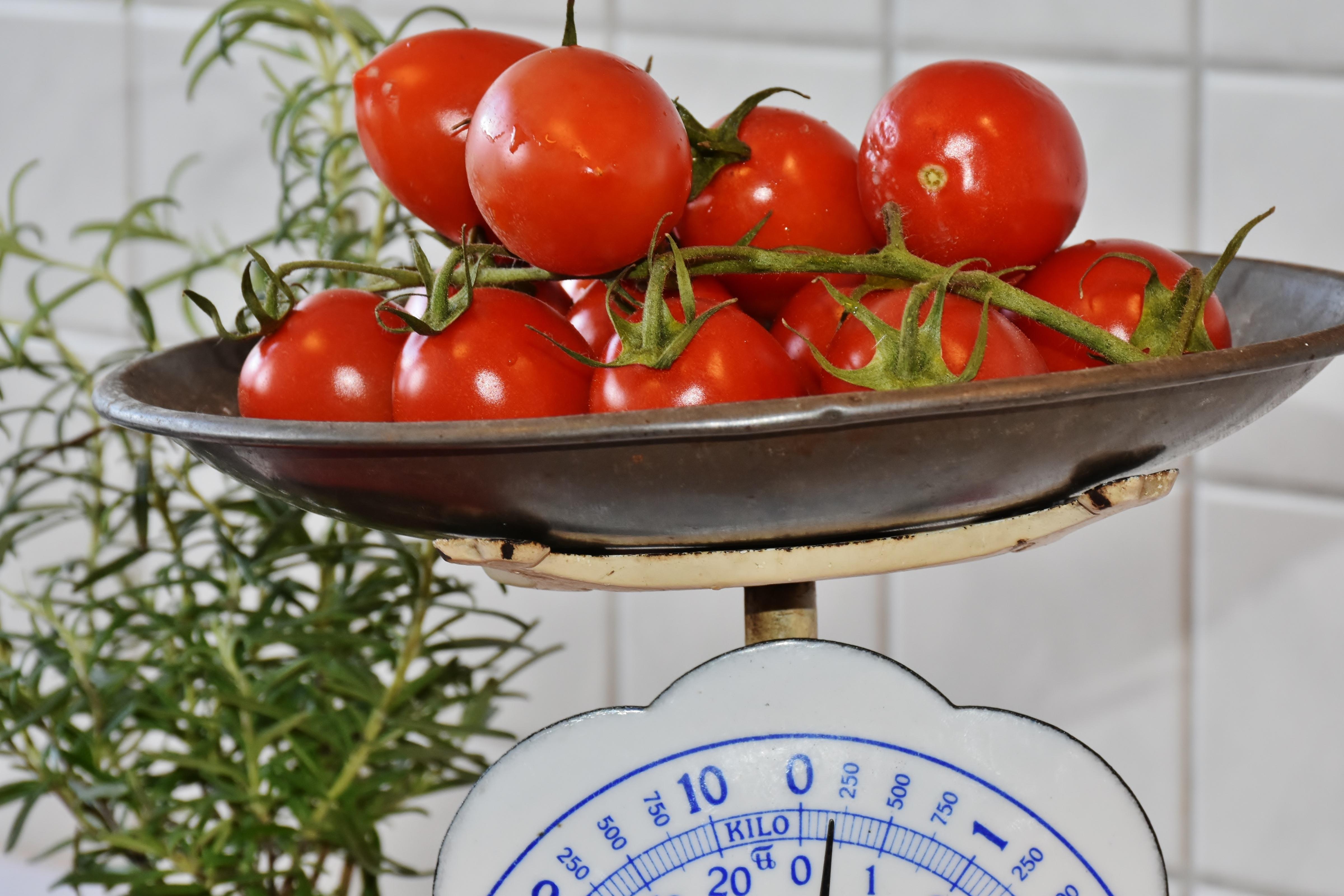 Gambar Menanam Buah Bunga Makan Makanan Salad Merah Menghasilkan Sayur Mayur Dapur Menimbang Sehat Kalori Sayuran Lezat Vegetarian