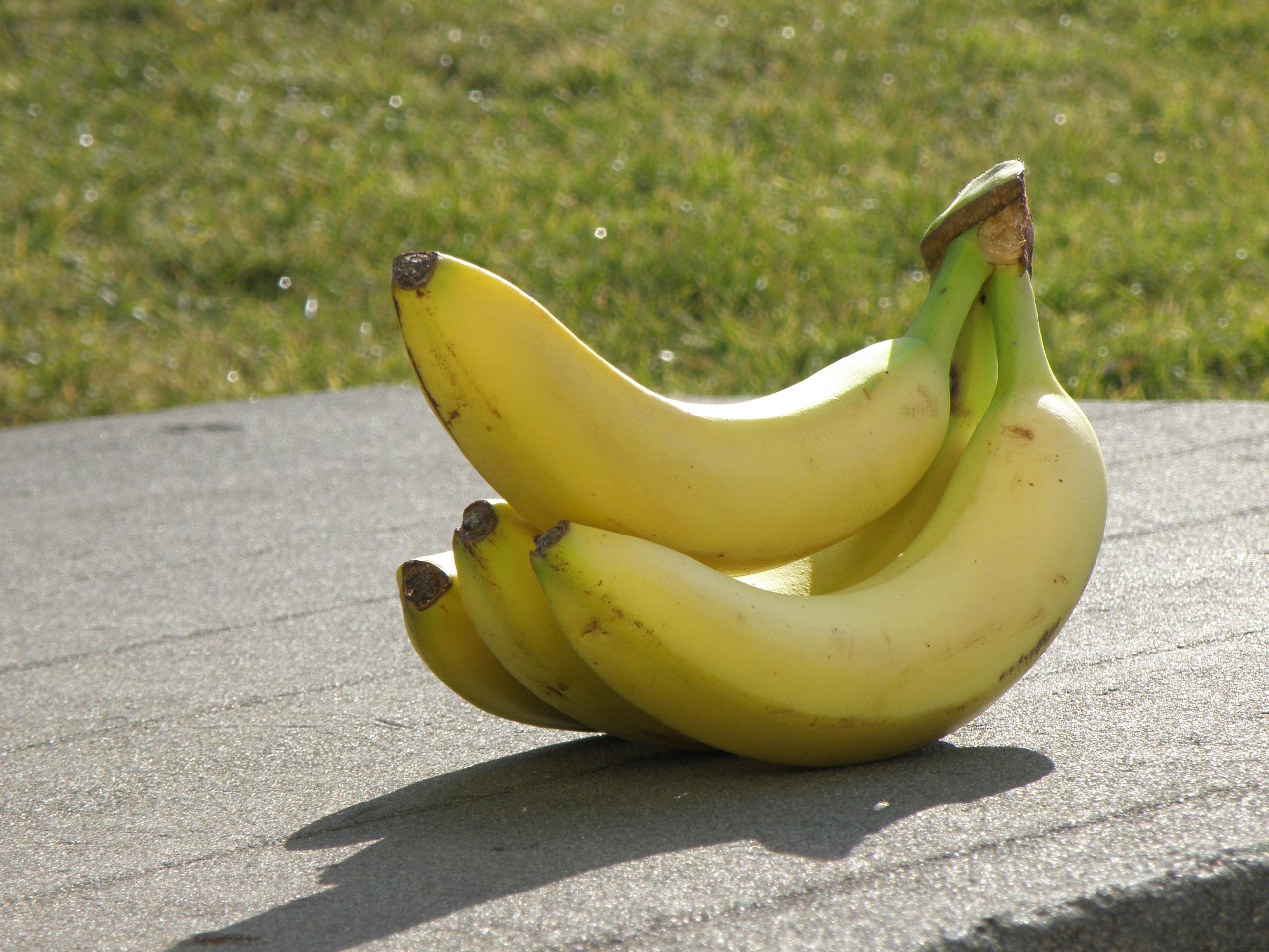 как жуют бананы фото увеличение