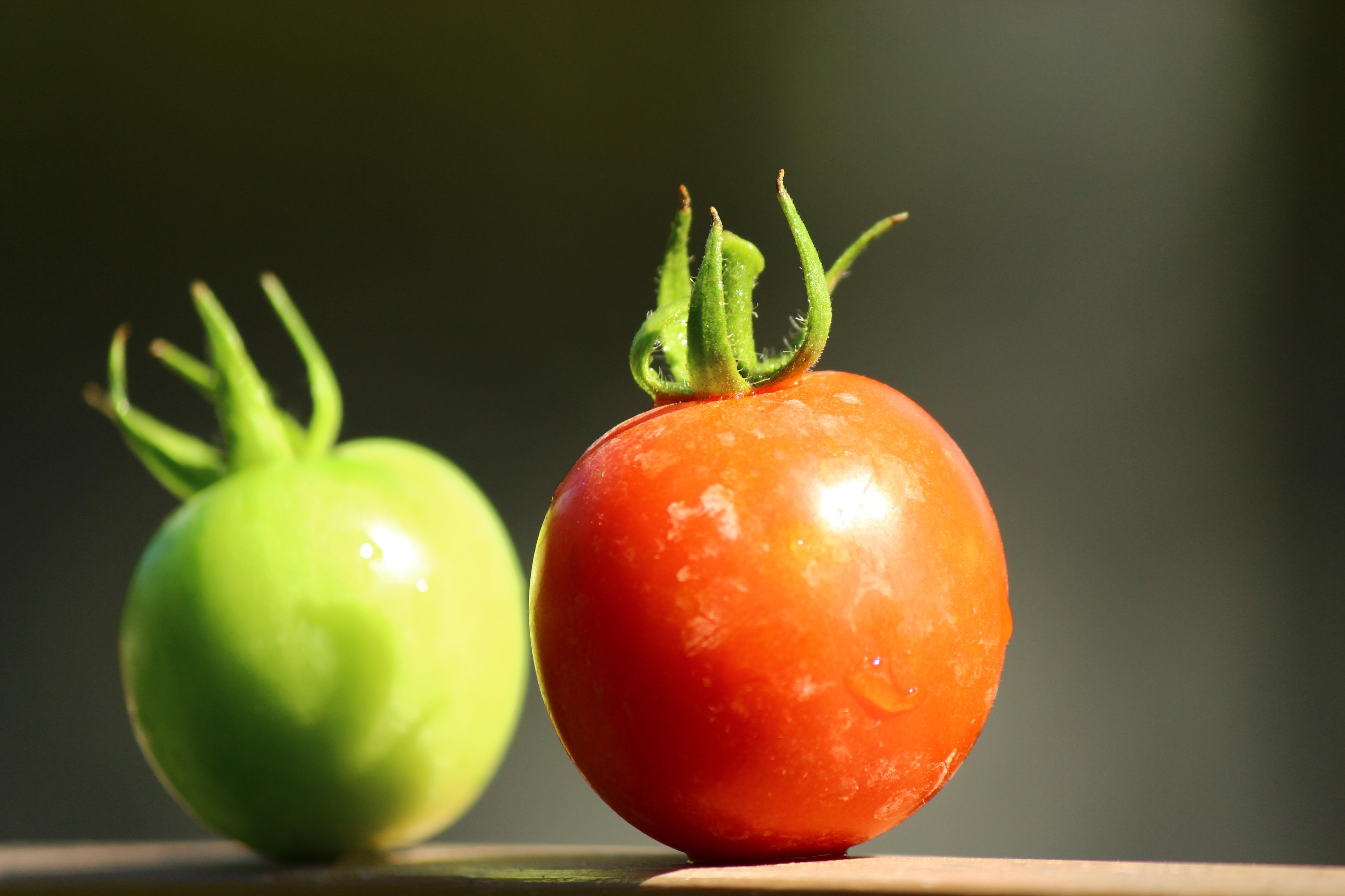 Kartoffel Bilder Kostenlos kostenlose foto frucht blume lebensmittel produzieren gemüse