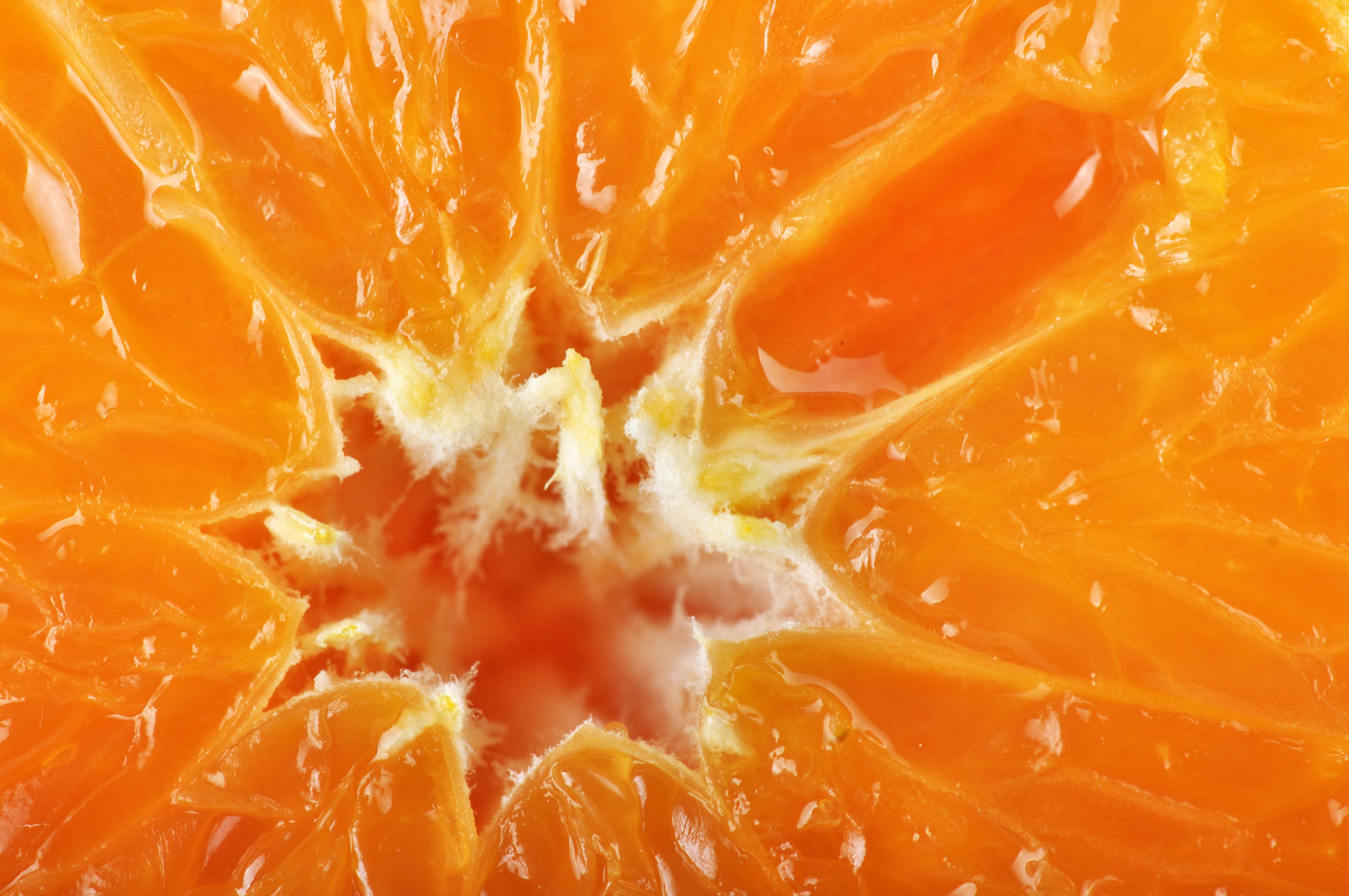Free Images : fruit, flower, food, produce, yellow, orange ...