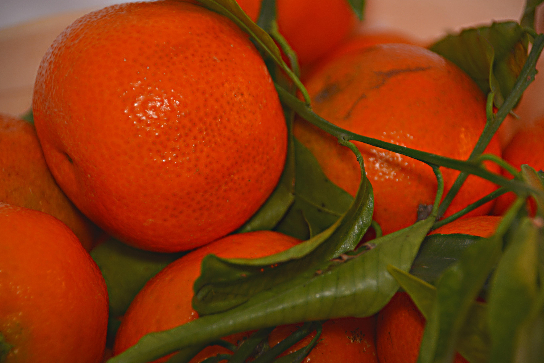 kostenlose foto frucht blume lebensmittel rot produzieren s d mandarine clementine. Black Bedroom Furniture Sets. Home Design Ideas