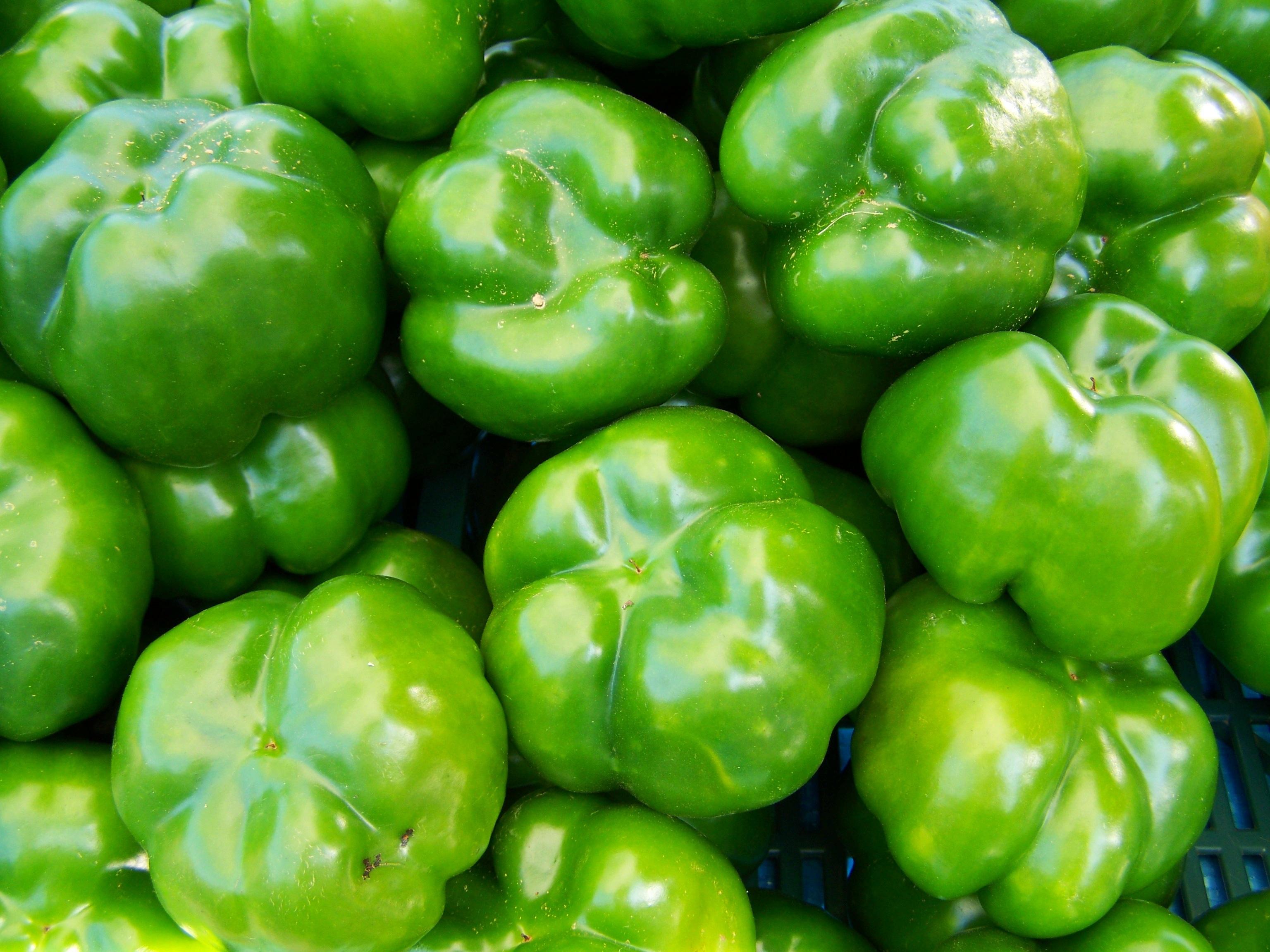 Free Images : fruit, food, green, produce, vegetable, vegetables, bell pepper, flowering plant, jalapeno, chili pepper, land plant, bird's eye chili, ...