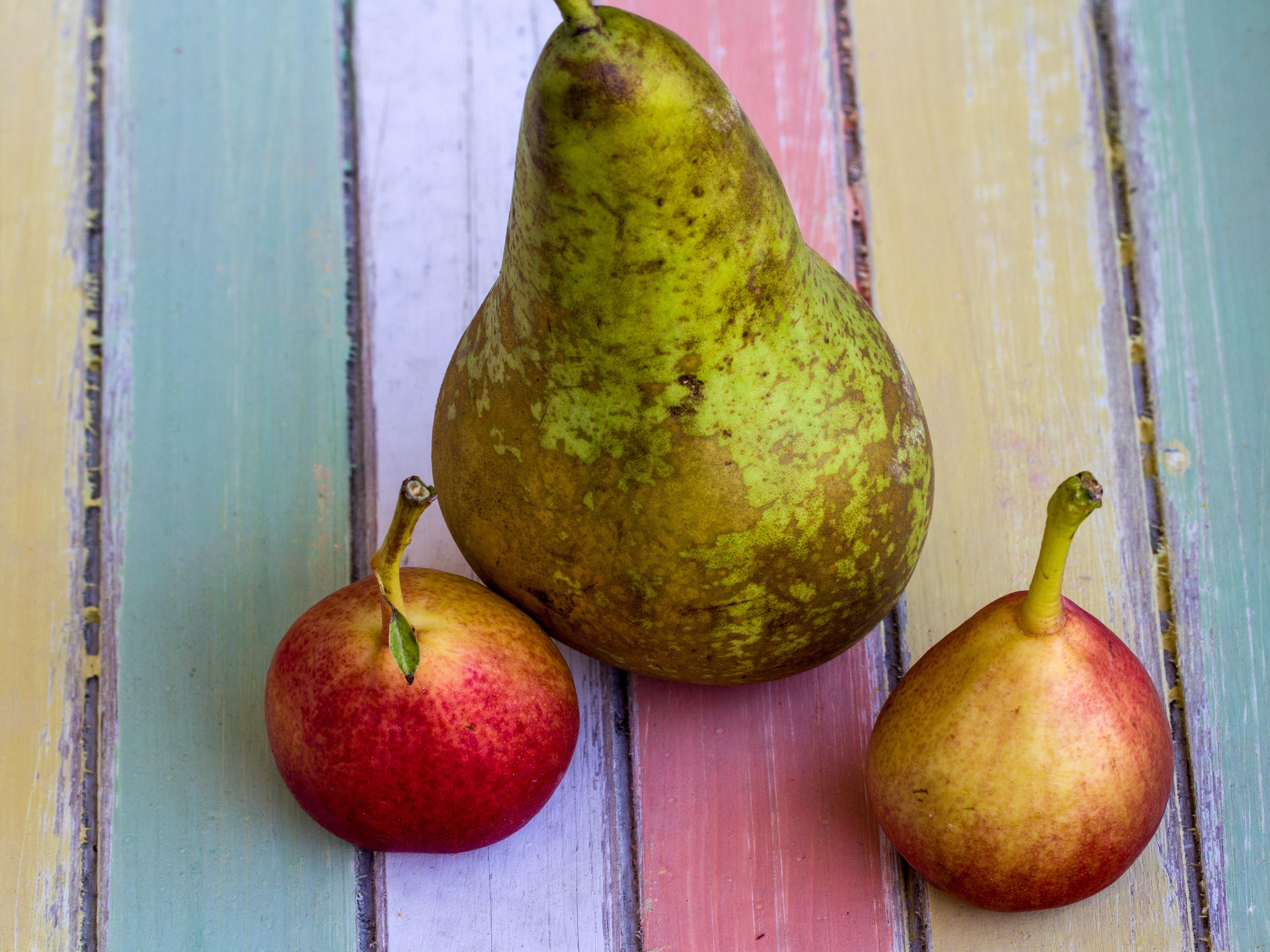 Fotoğraf Gıda üretmek Armut Boyama Arka Fon Armutlar Meyve