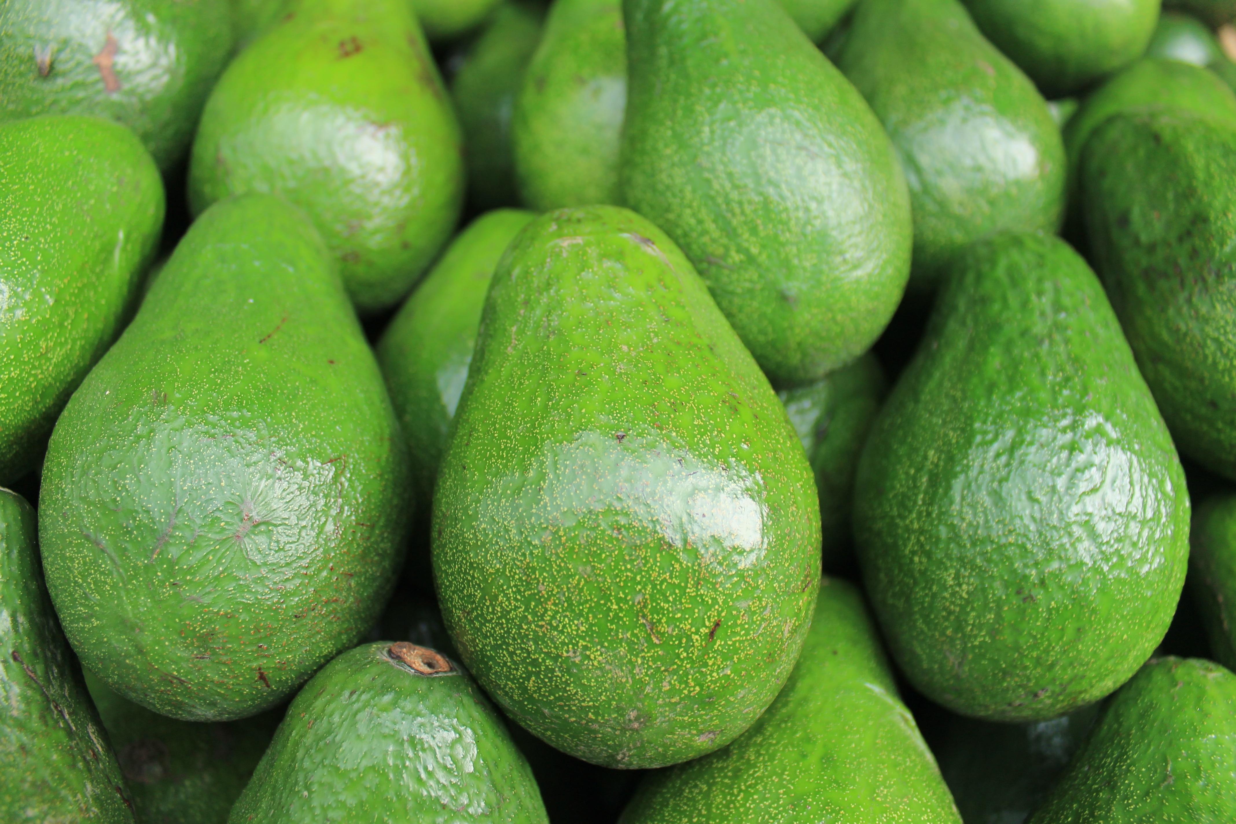 images gratuites fruit aliments produire l gume avocat citron vert agrumes plante. Black Bedroom Furniture Sets. Home Design Ideas