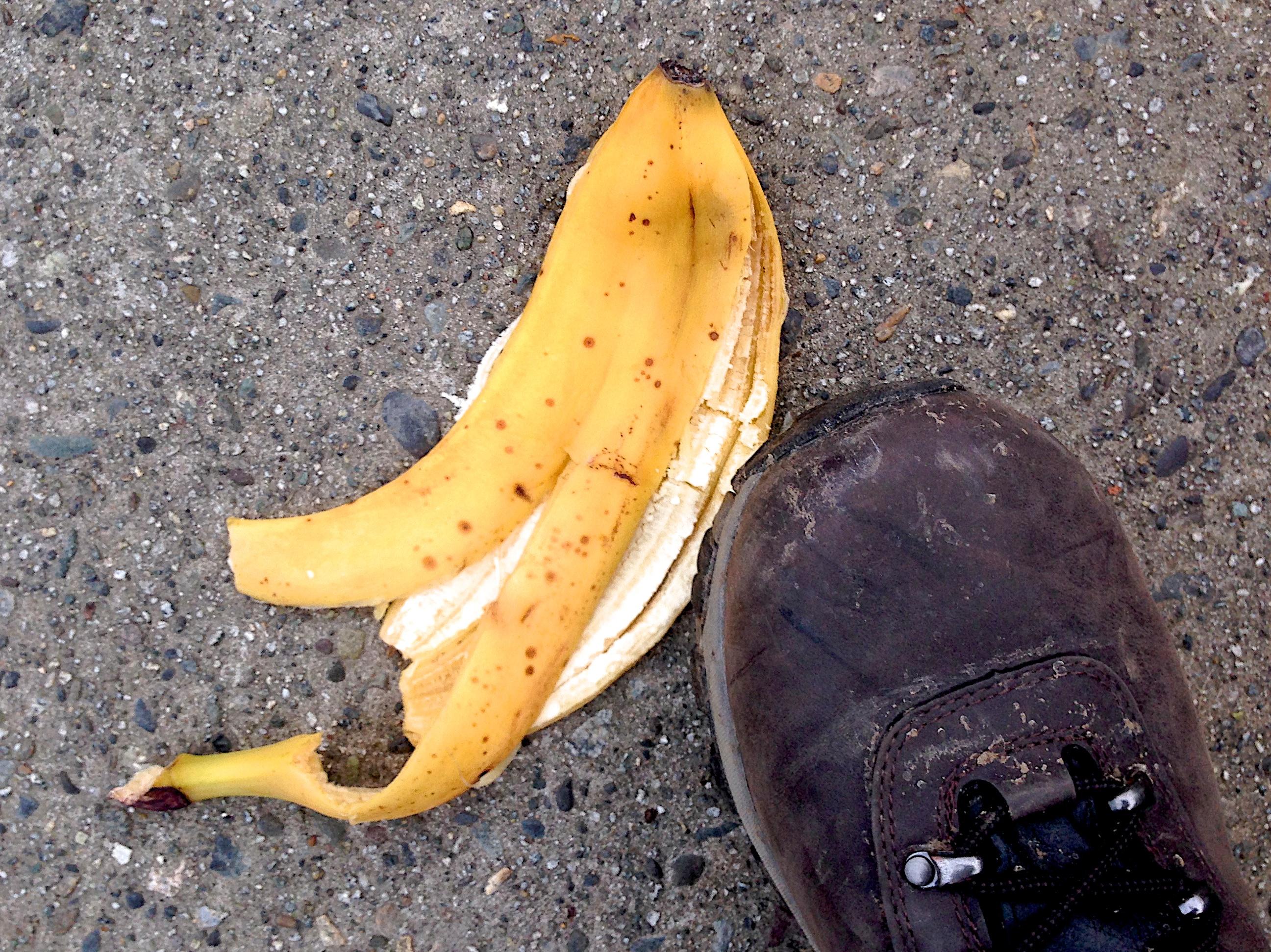 Gambar Menanam Buah Makanan Menghasilkan Sayur Mayur 2014365