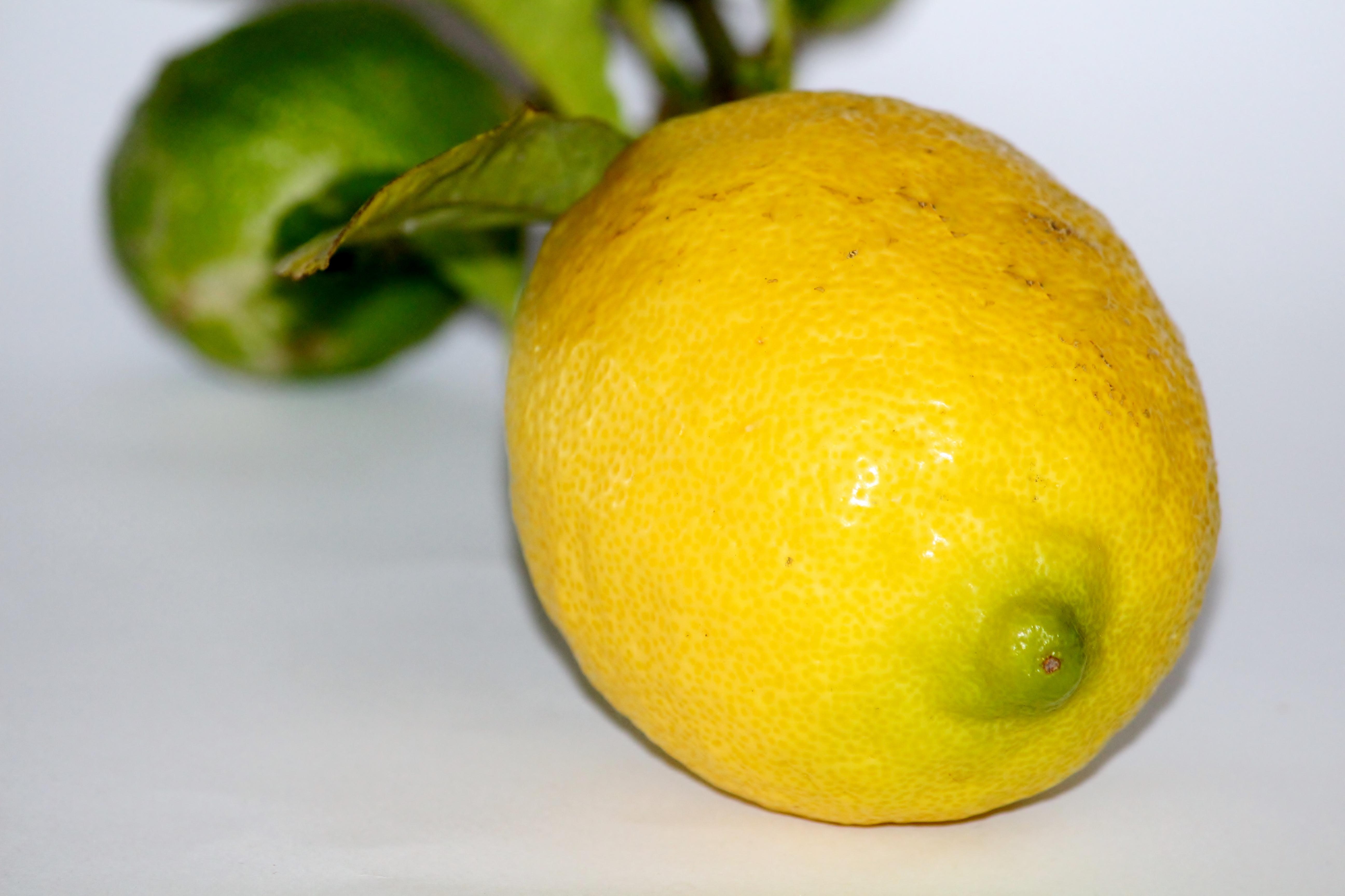 Картинка лимон леди