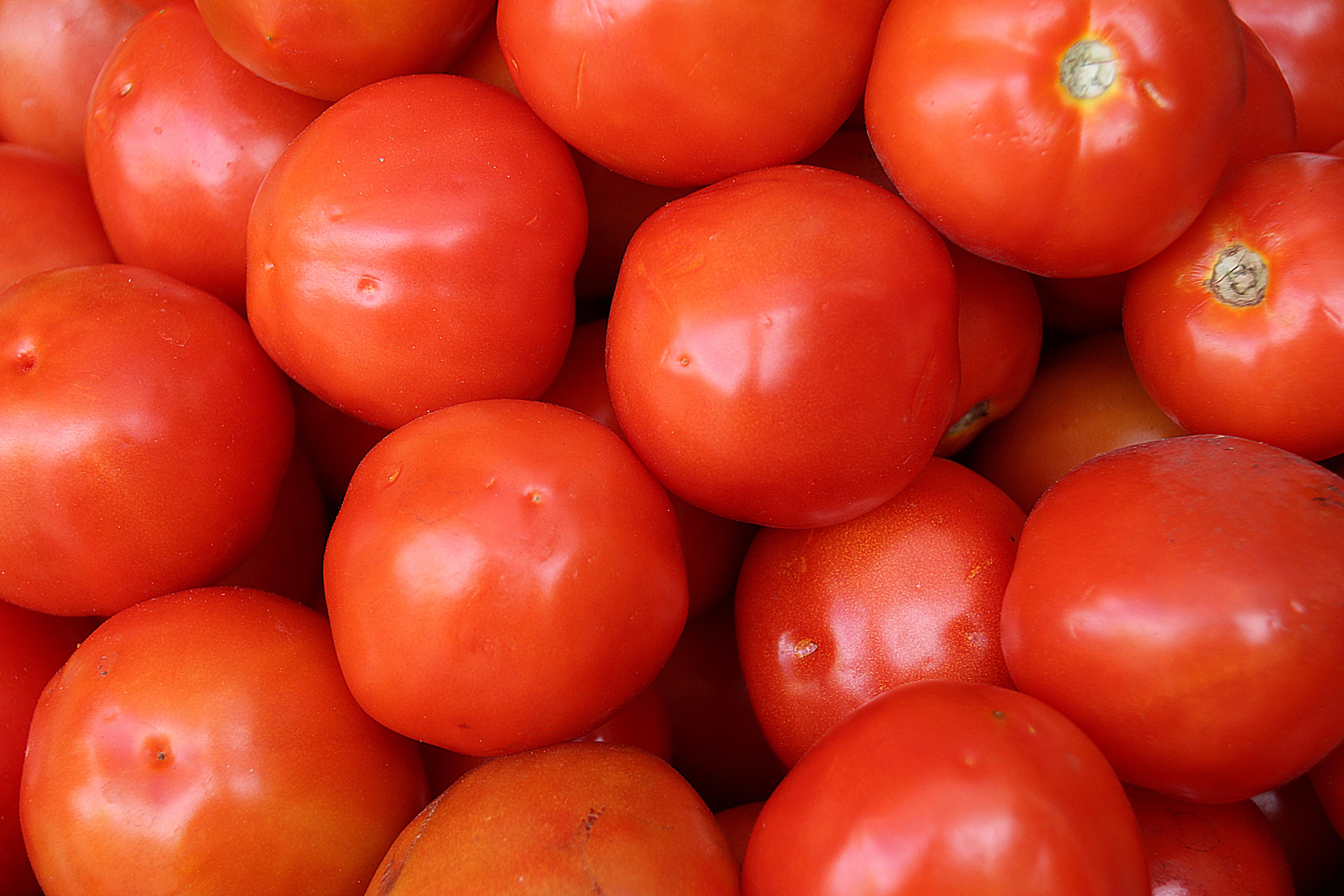 Fotoğraf Meyve Gıda Kırmızı Mutfak üretmek Sebze Renkli