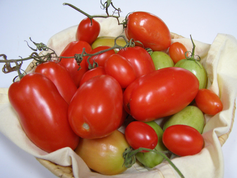 Fotos gratis fruta comida rojo produce vegetal for Plantar pimientos y tomates