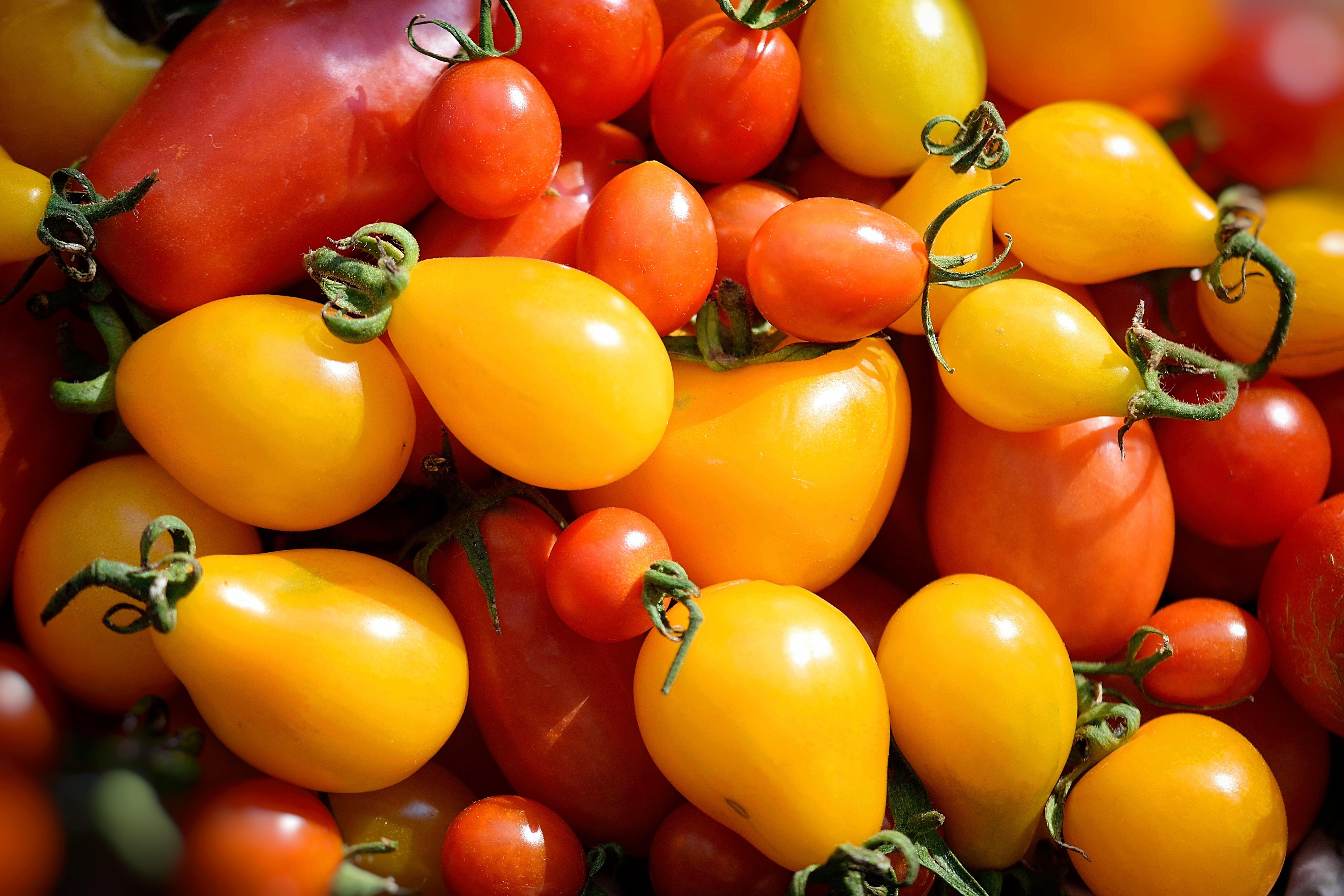 люблю желтый томат картинки ещё