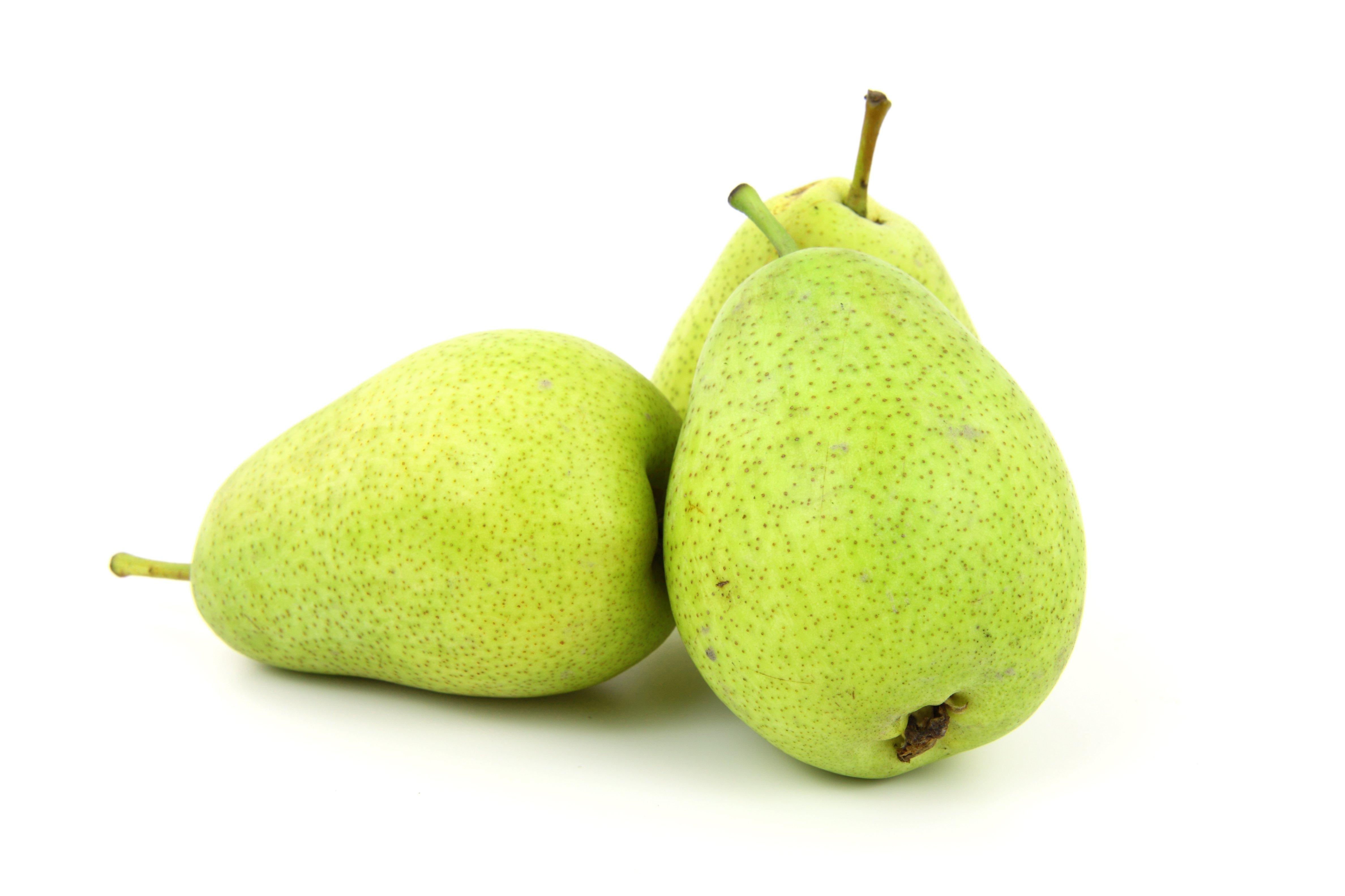 картинка одной груши фруктами железногорске занимаются обучением