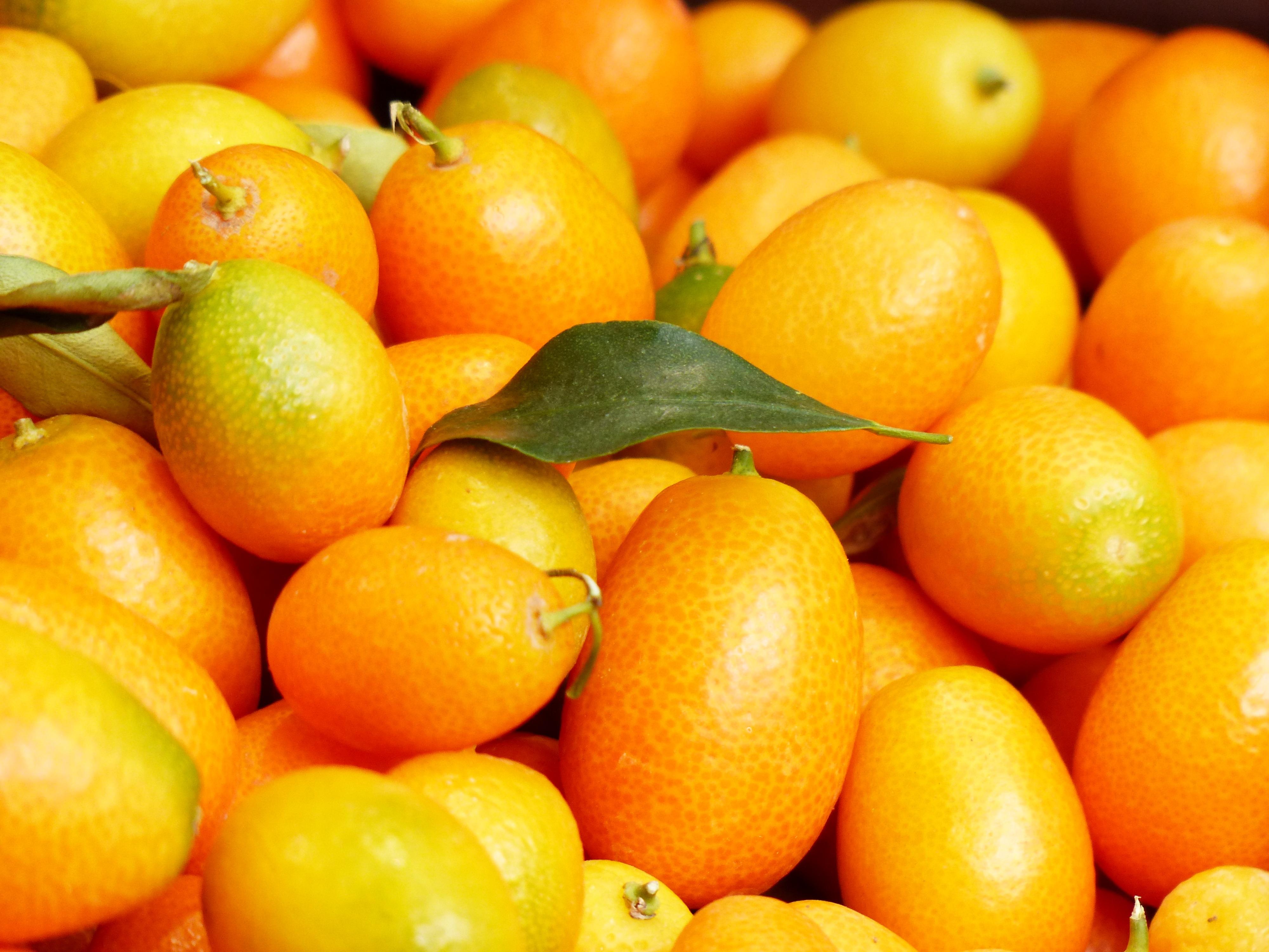 kostenlose foto frucht lebensmittel produzieren fr chte mandarine kumquat clementine. Black Bedroom Furniture Sets. Home Design Ideas