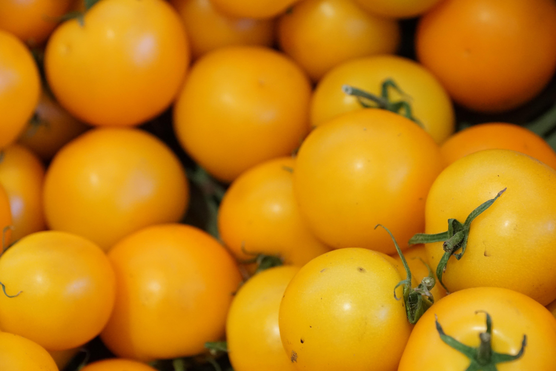 желтый томат картинки иголочки прятали полочкой