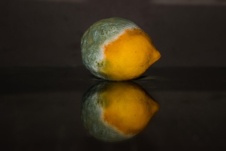 Fotoğraf Meyve Olgun Gıda Yeşil Yansıma üretmek çürüme Sarı