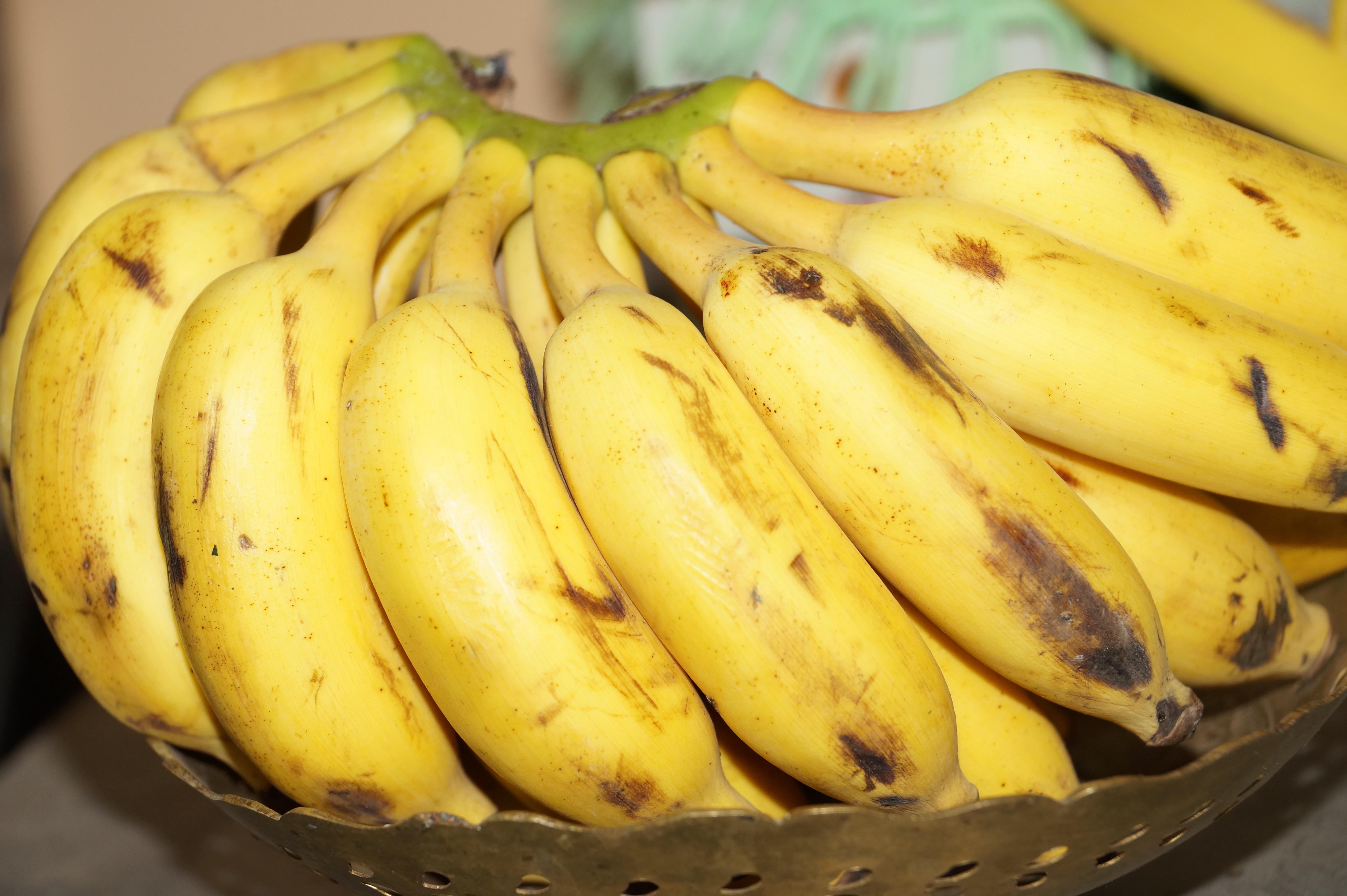там бананы сорта в картинках удочка универсальный