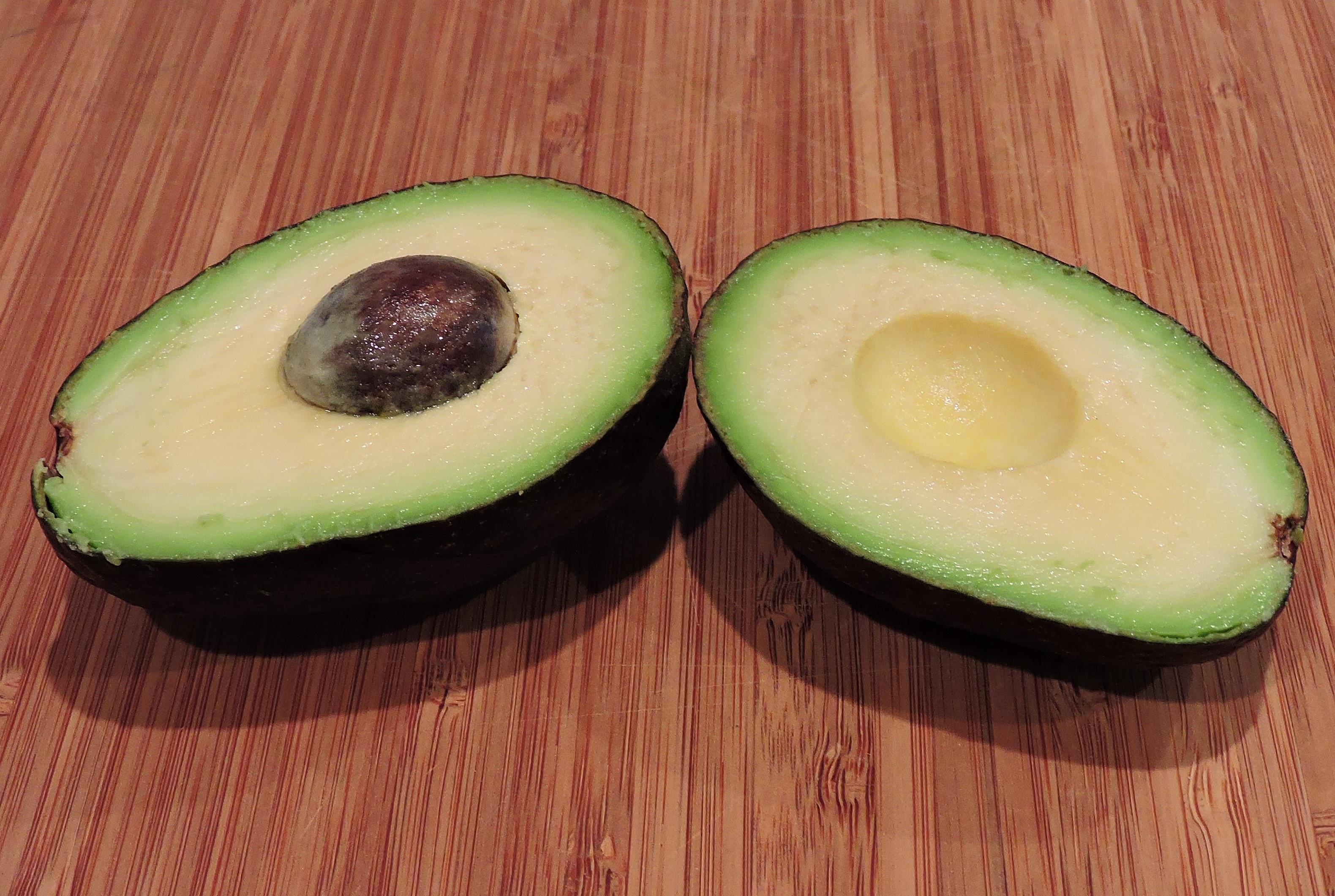 menanam buah benih makanan hijau menghasilkan segar alpukat sehat kelapa tanaman berbunga bagian tanaman tanah
