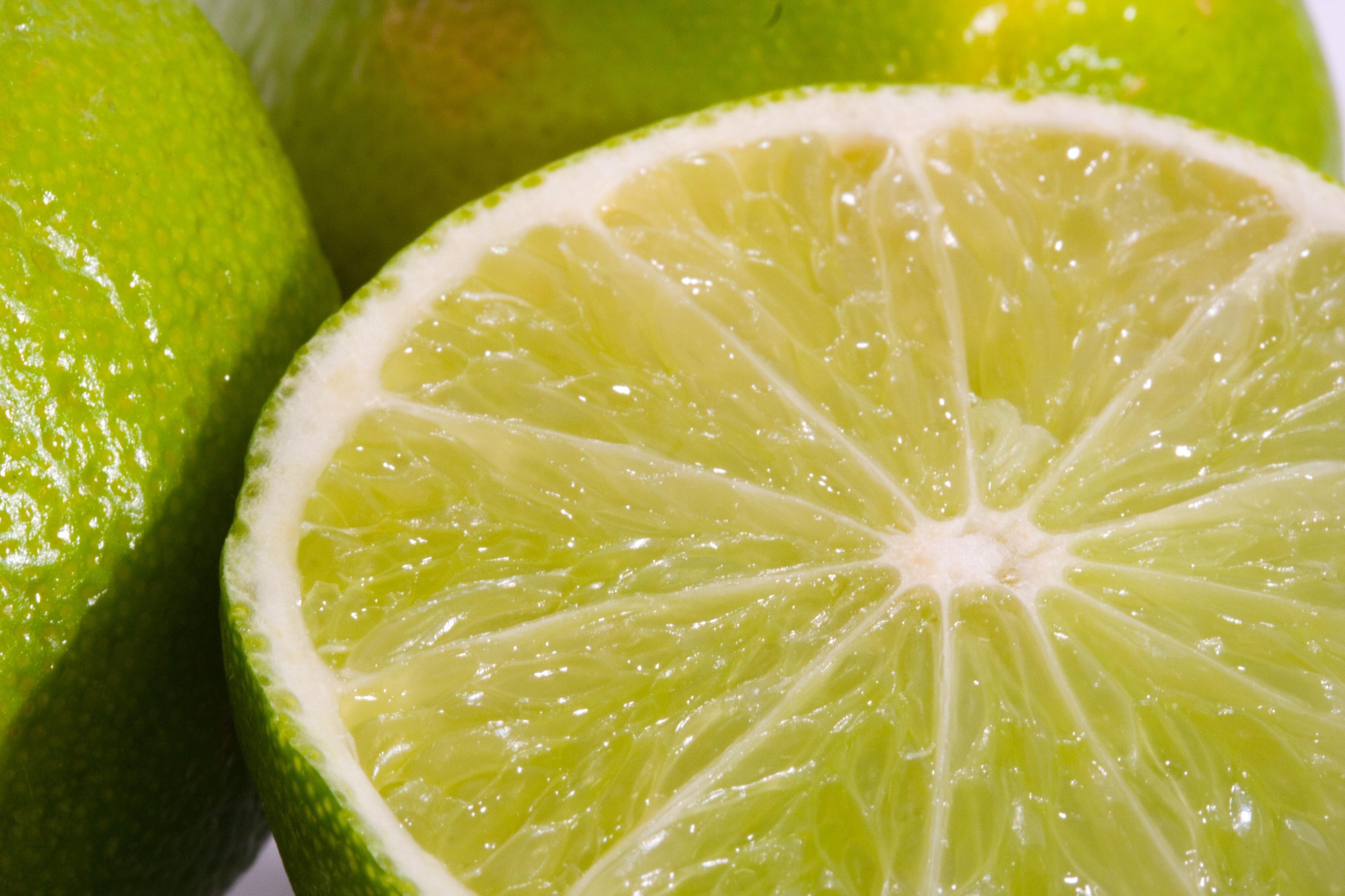 декоративное дерево фотографии фрукта лайм приходом