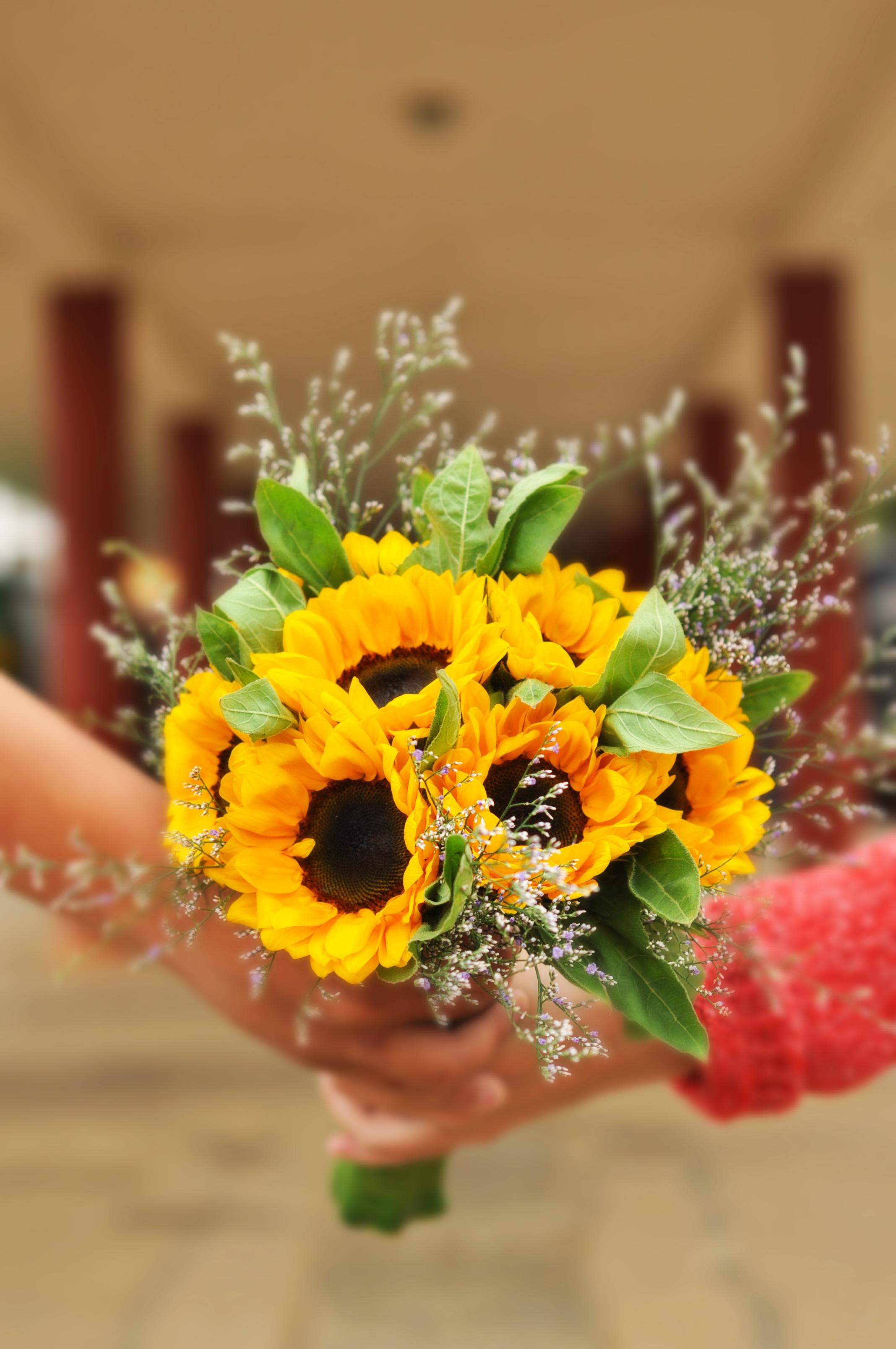 images gratuites : fille, fleur, jaune, mariage, tenir, flore